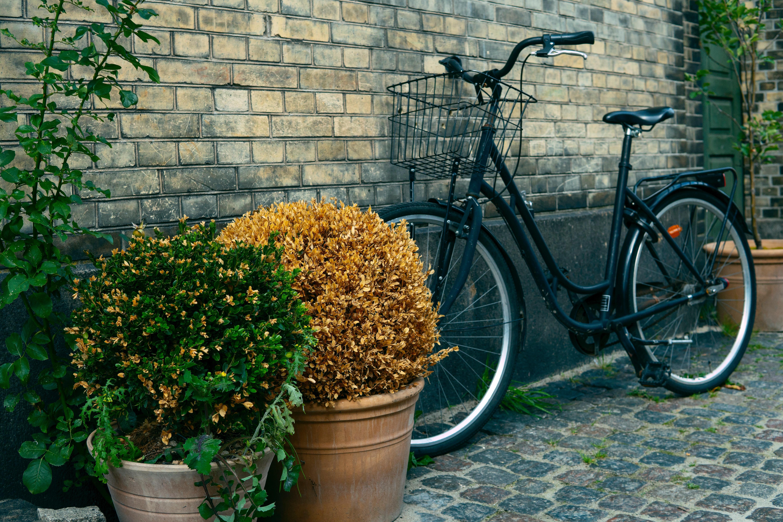 Bakstenen Muur Tuin : Gratis afbeeldingen : fiets bakstenen kleur denemarken bloempot