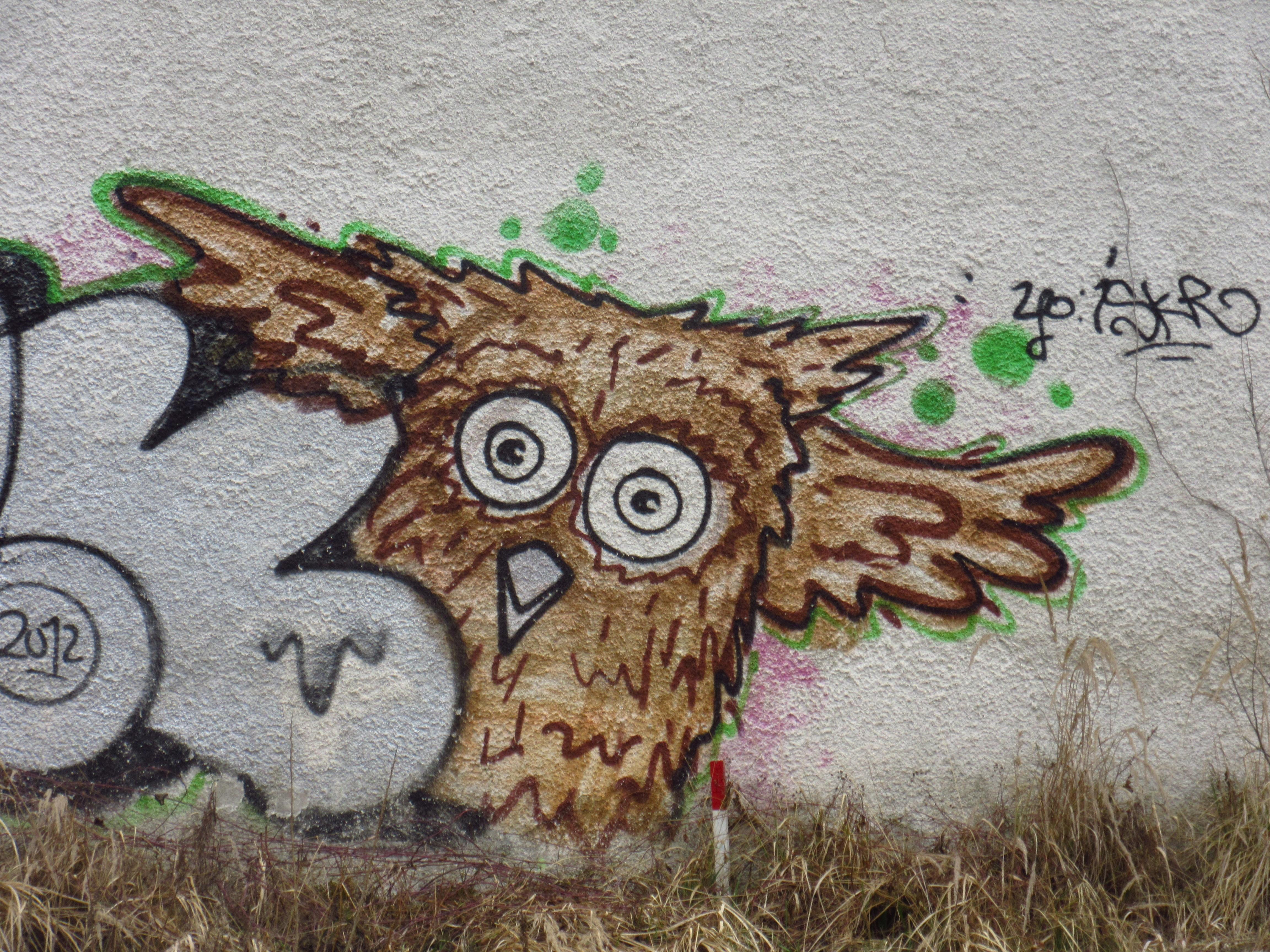 Gambar Hewan Coretan Burung Hantu Seni Jalanan Gambar