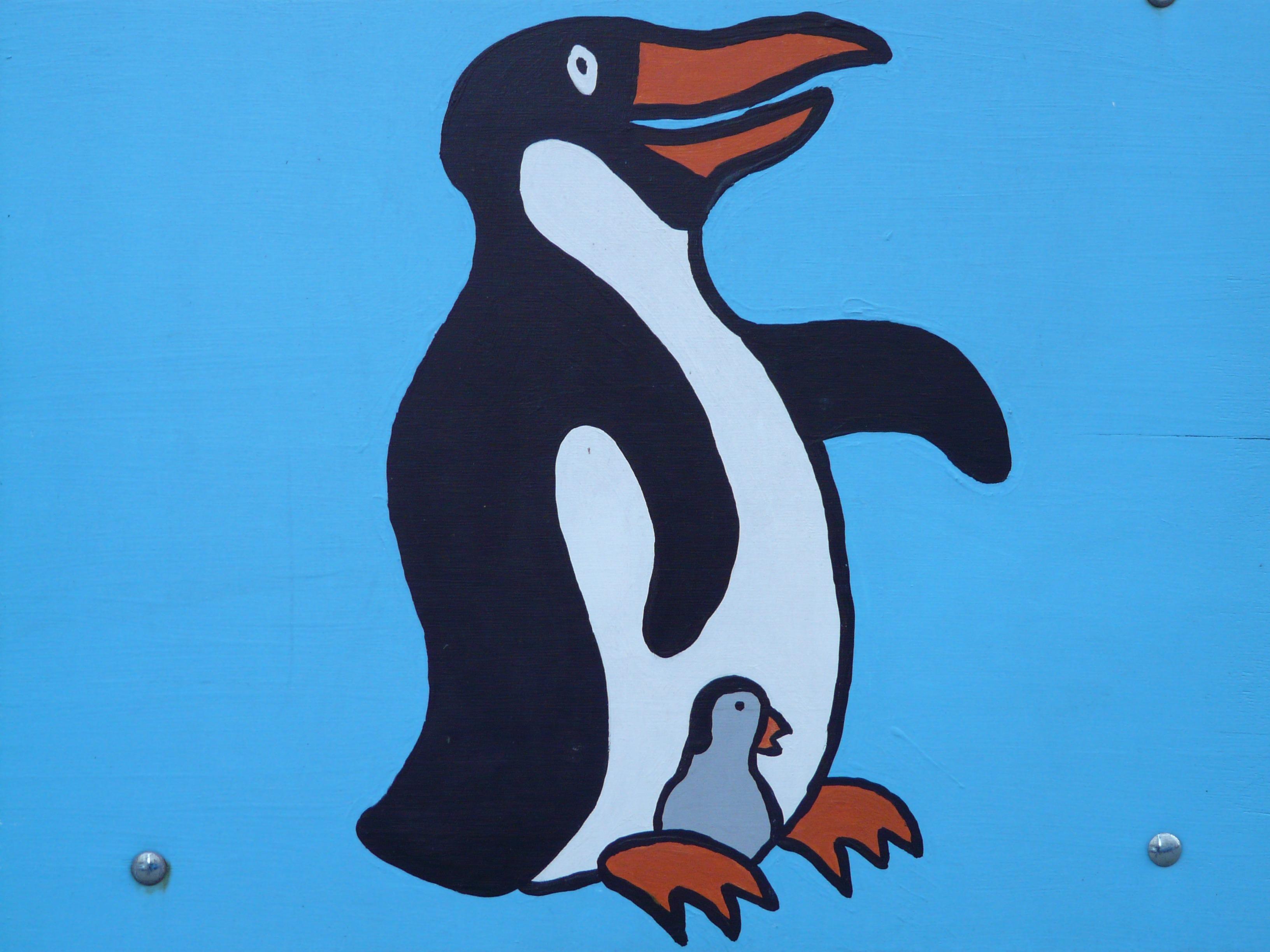 bird-animal-paint-penguin-cheerful-figur