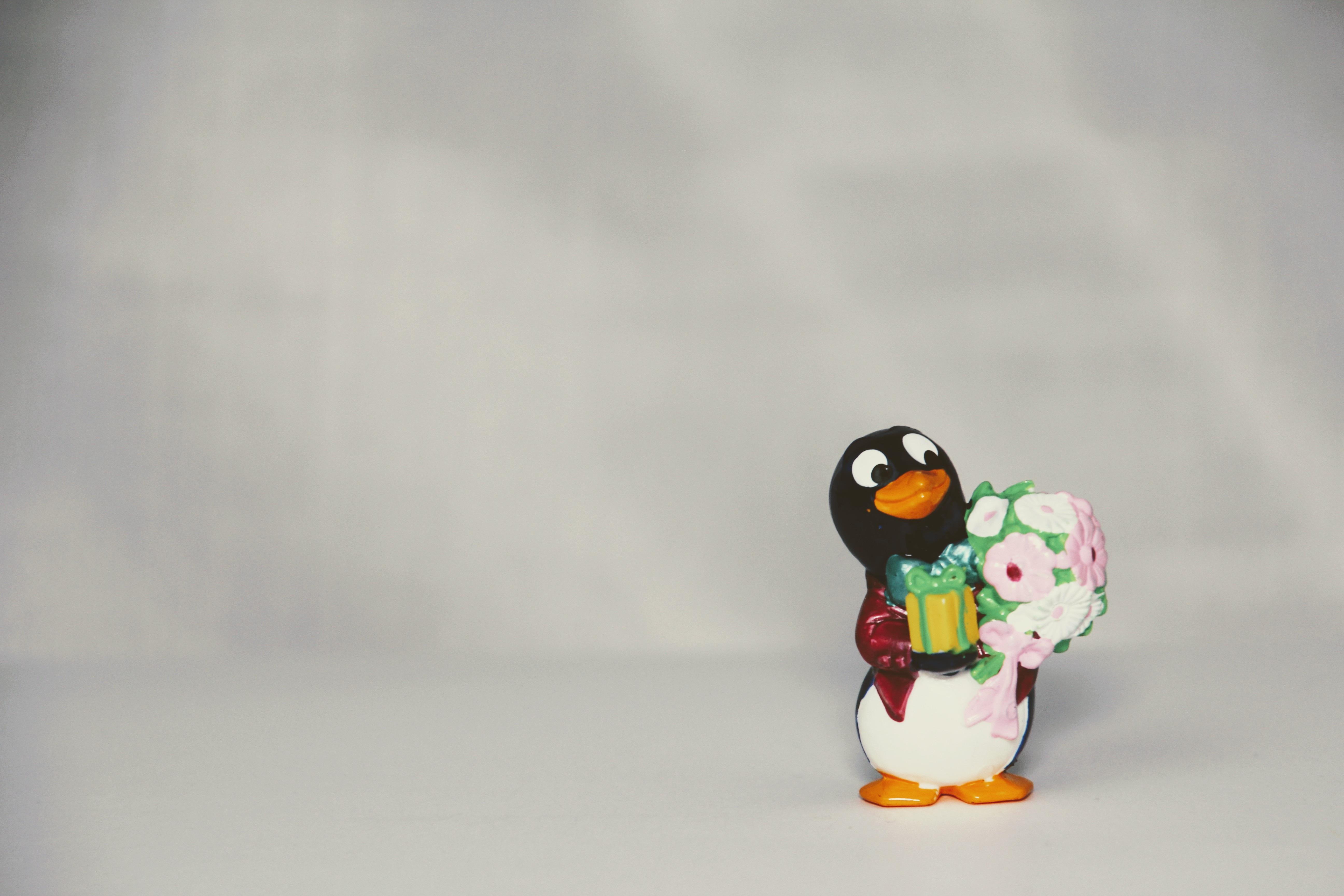 Gratis Afbeeldingen Viering Verzameling Speelgoed Pinguin