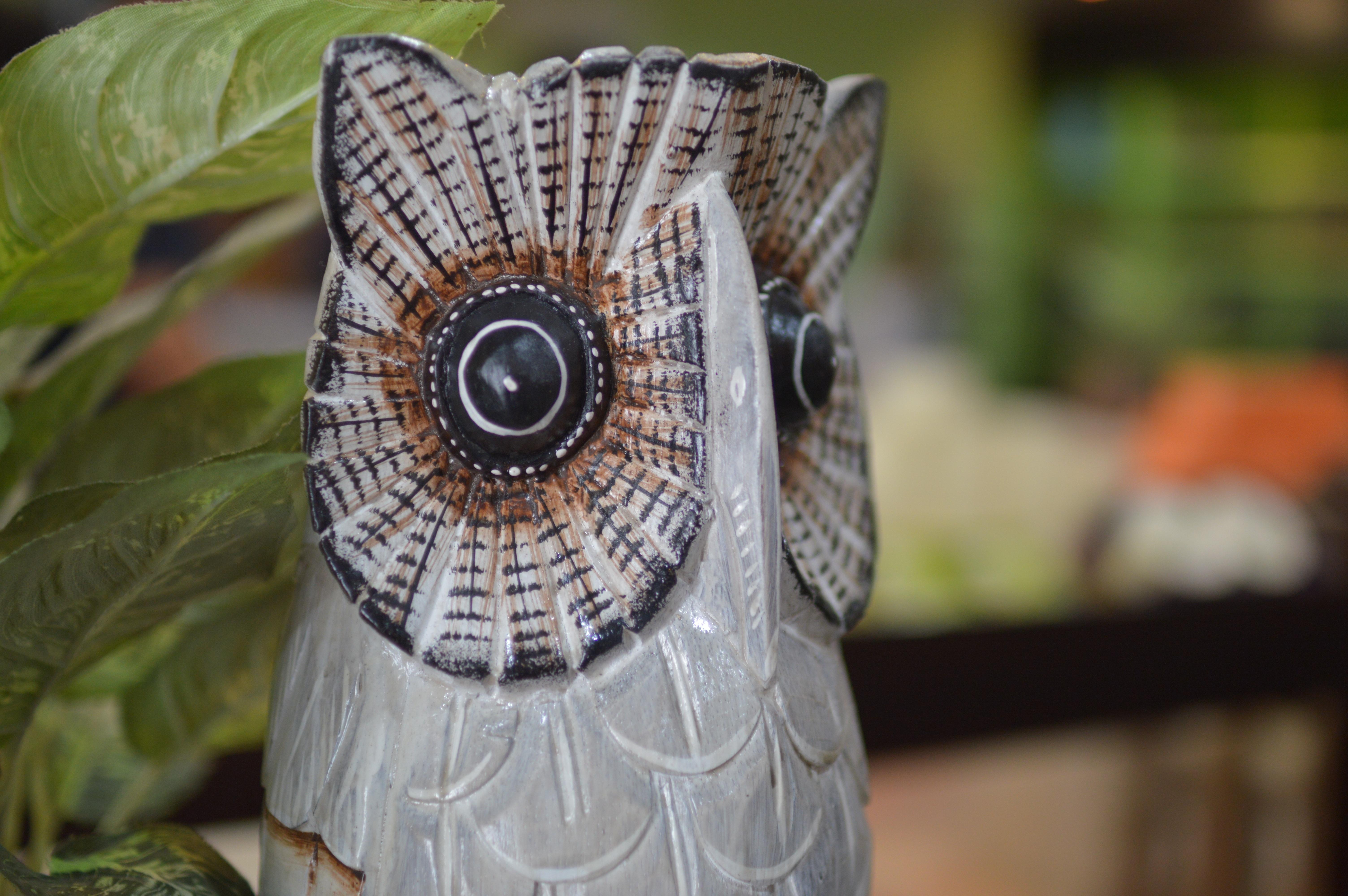 Fotos gratis : pájaro, regalo, patrón, ropa, búho, escultura, art ...