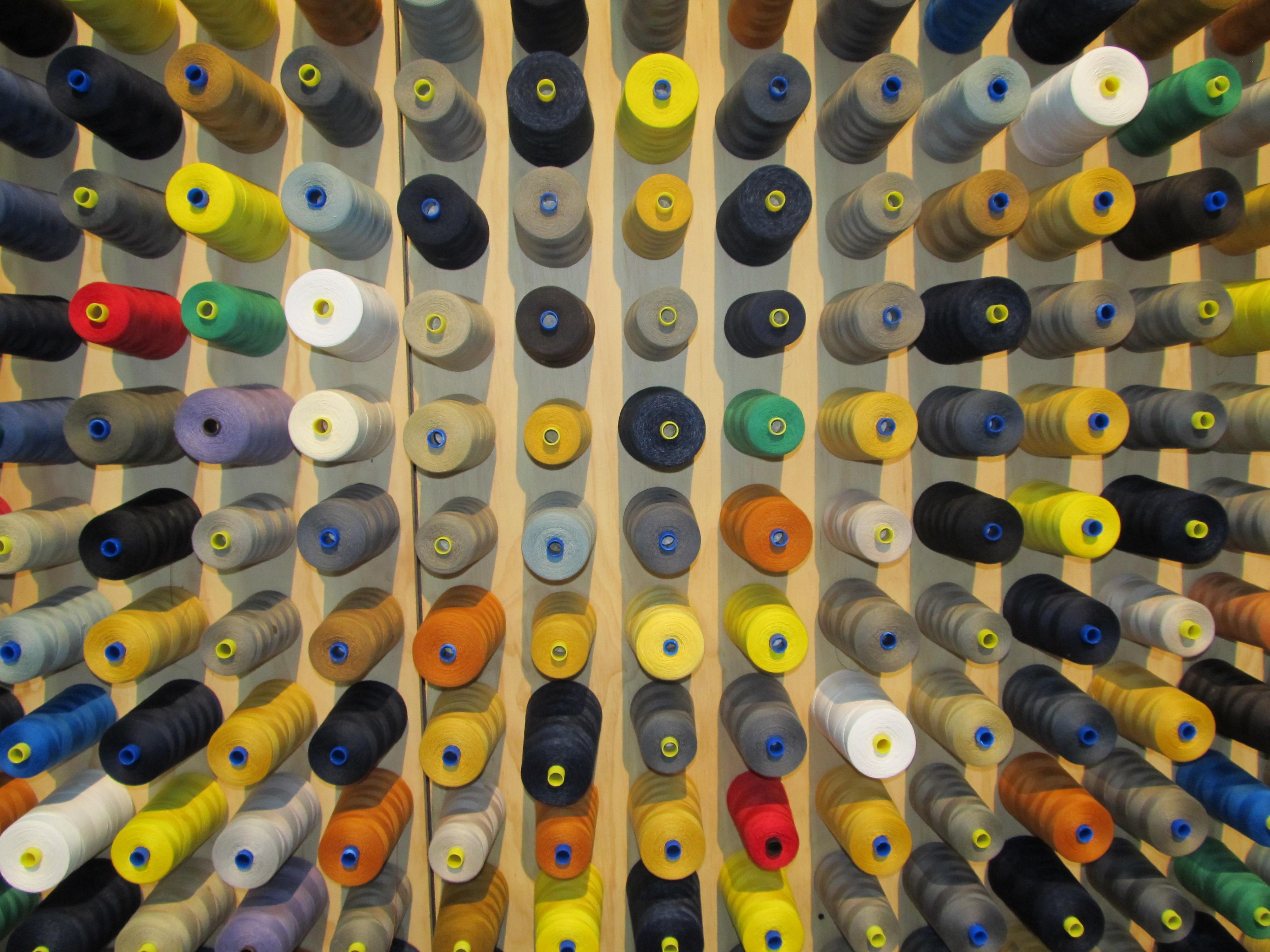 Kostenlose foto : Vogel, Grün, Farbe, blau, Gelb, Spielzeug ...