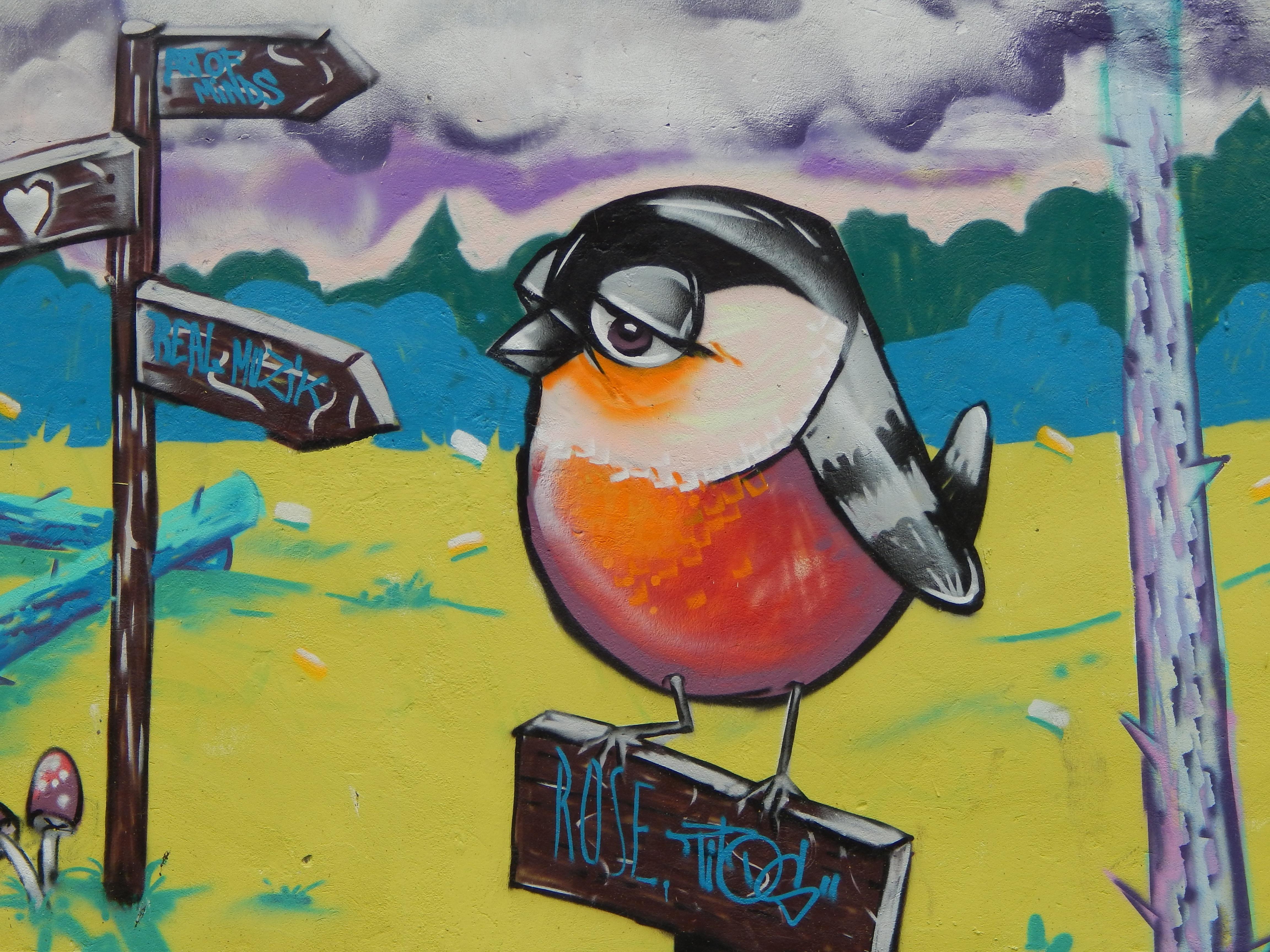 Citaten Kunst Yang Bagus : Gambar burung lukisan ilustrasi grafis seni