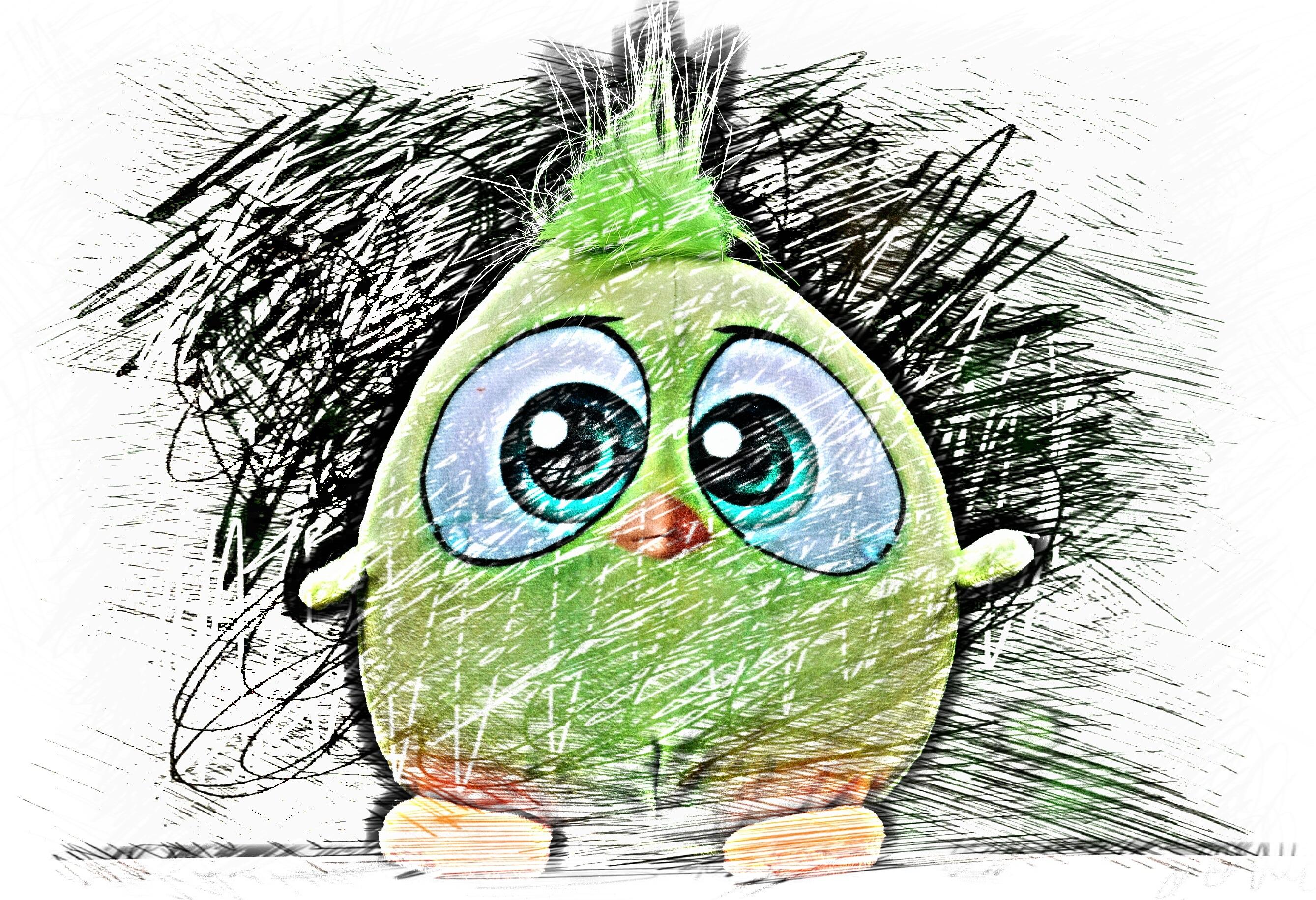 Gambar Burung Manis Imut Warna Warni Seni Sketsa