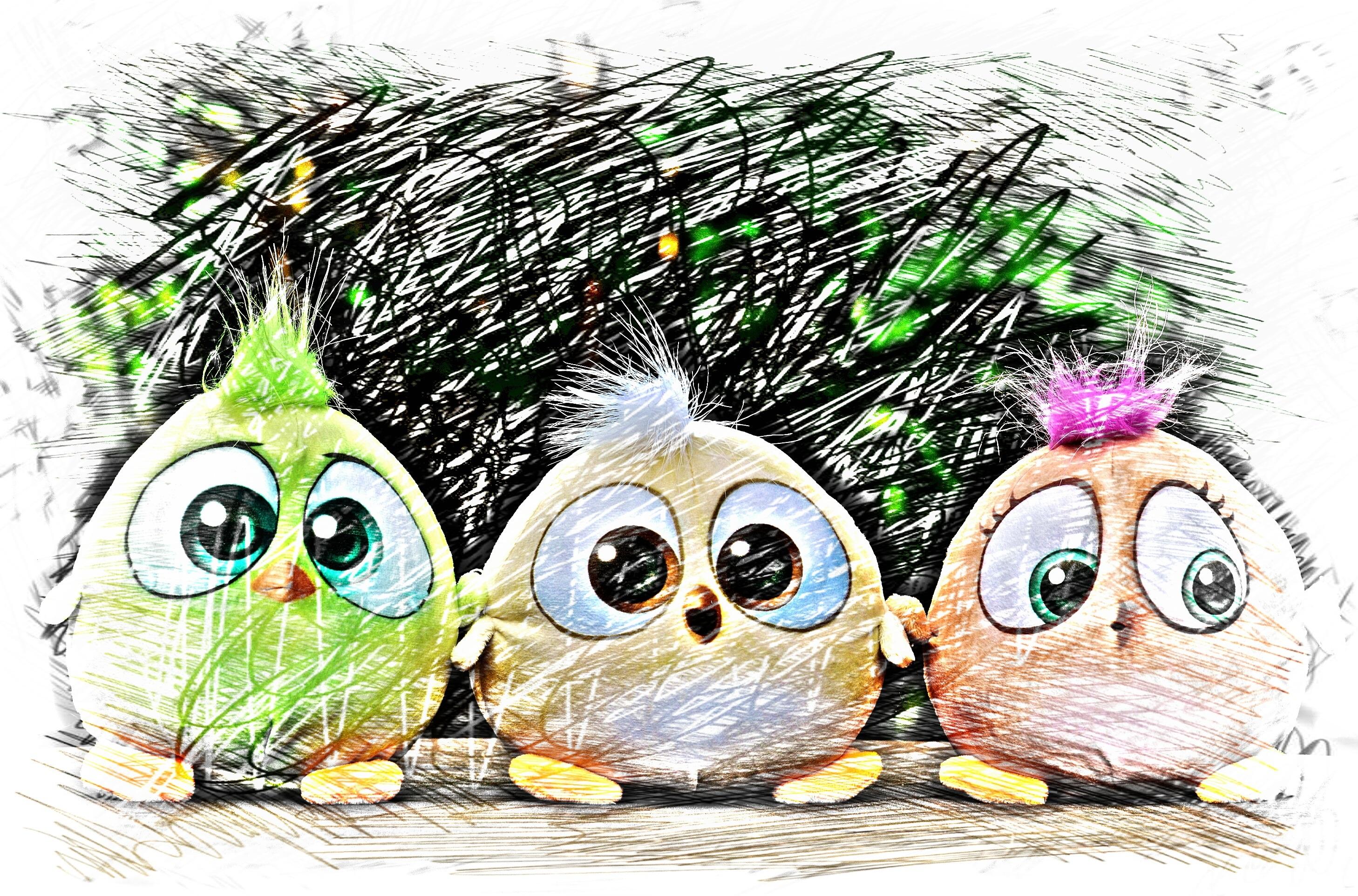 Птицы в смешных рисунках, поздравления марта
