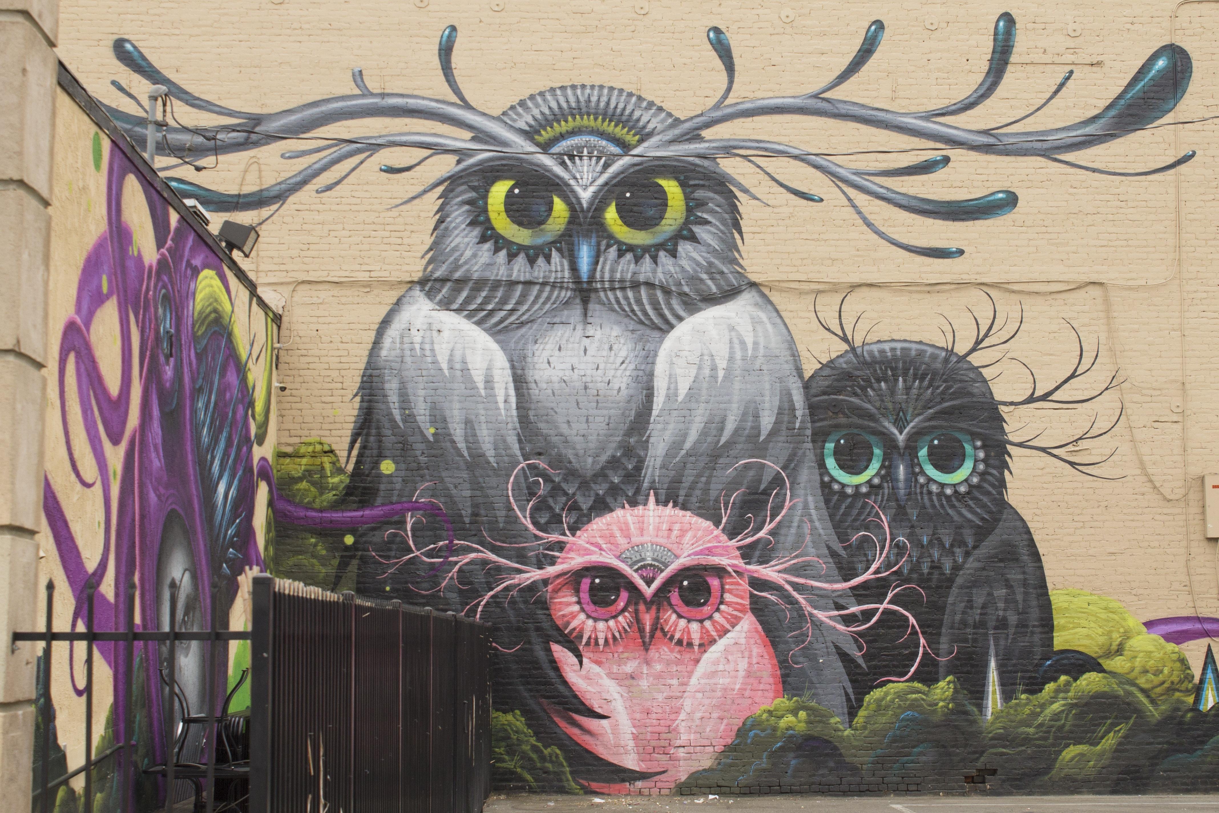 Gambar Perkotaan Artistik Coretan Burung Hantu Burung