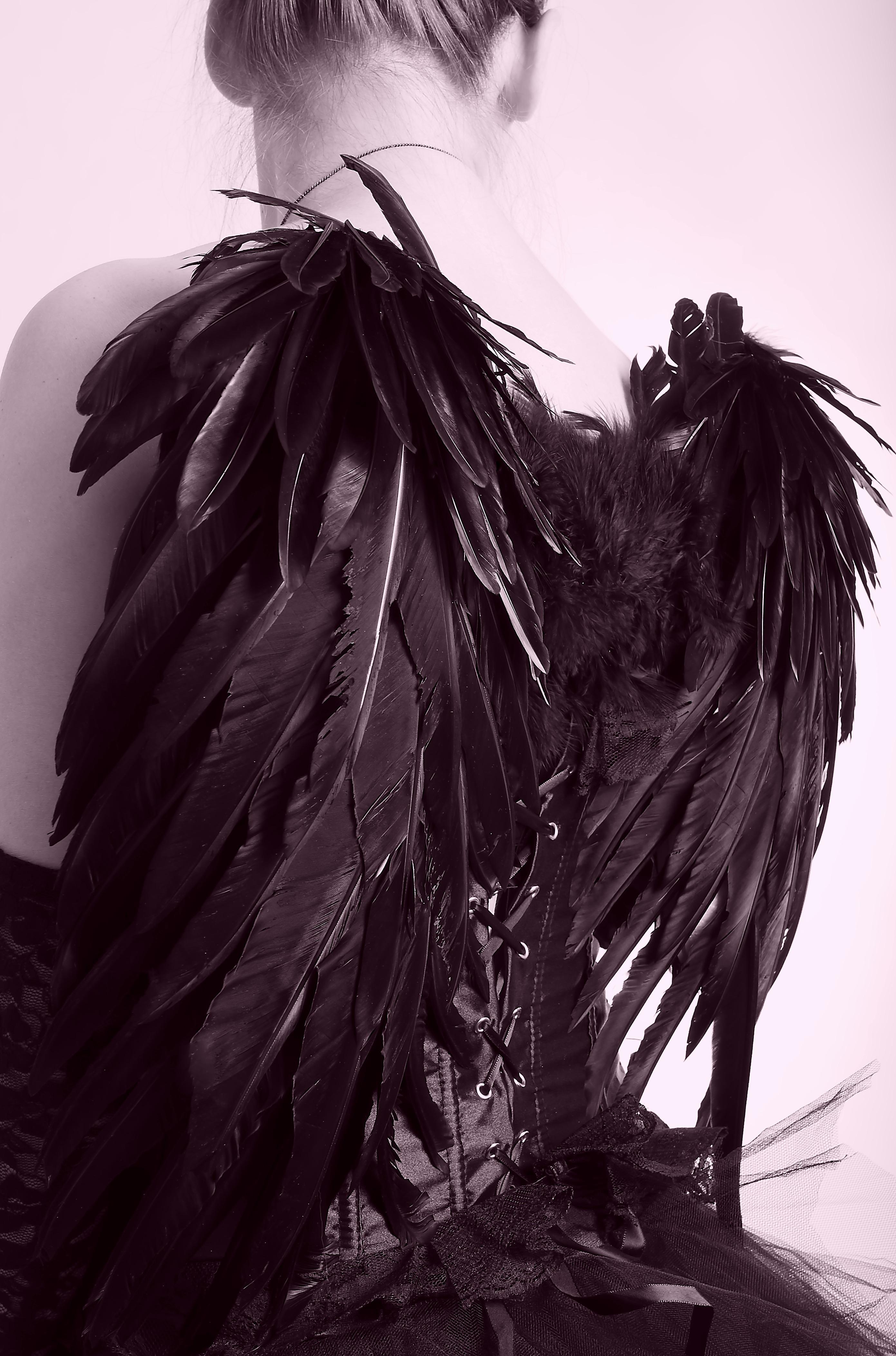 Gambar Burung Sayap Hitam Dan Putih Satu Warna Bulu Bahan Malaikat Sketsa Fotografi Monokrom Subkultur Goth Engel Hitam 2782x4210 997533 Galeri Foto Pxhere