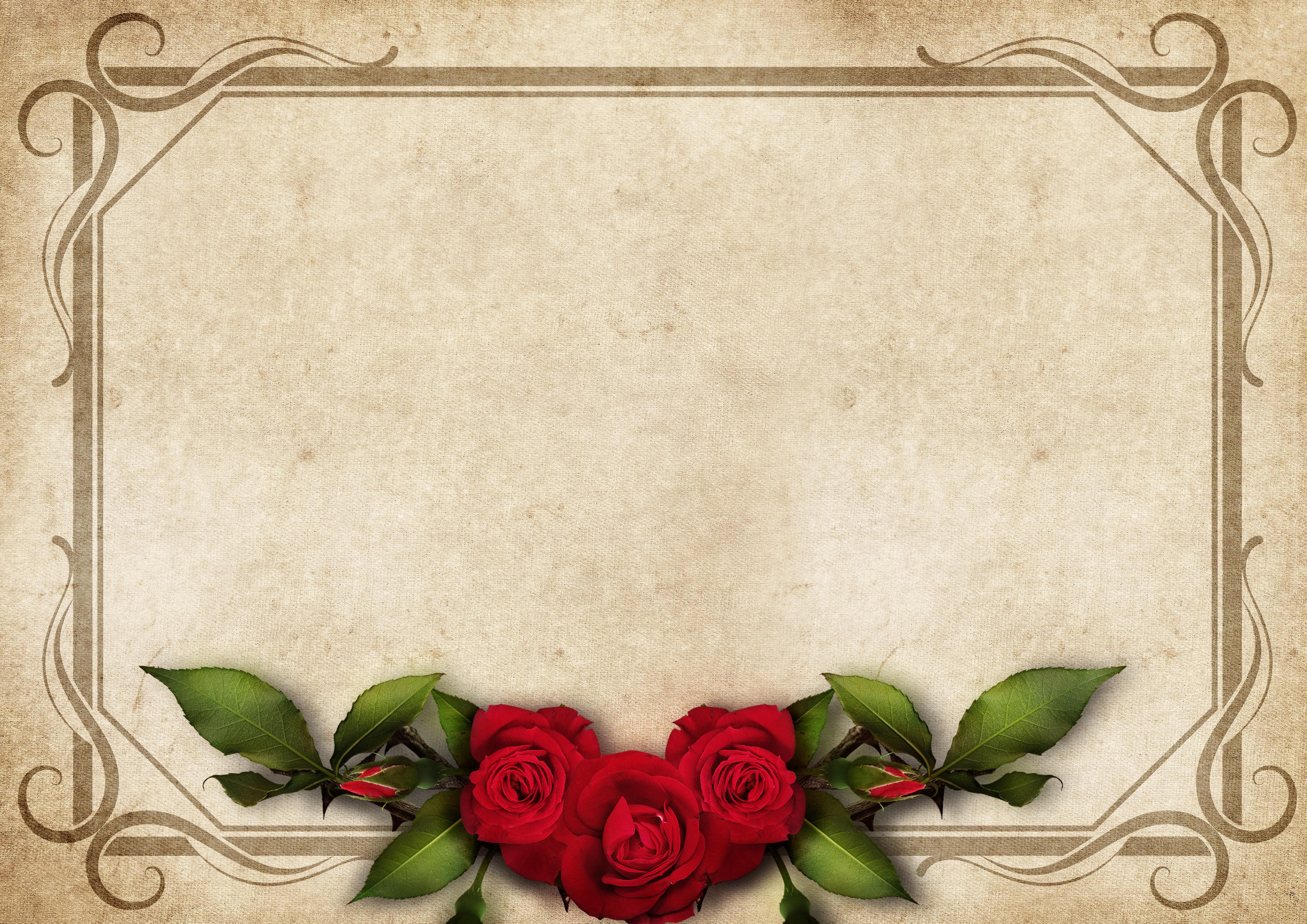 660 Gambar Bingkai Foto Romantis HD Terbaik