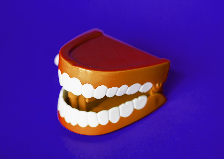 прикольные картинки челюстей дали тебе влад
