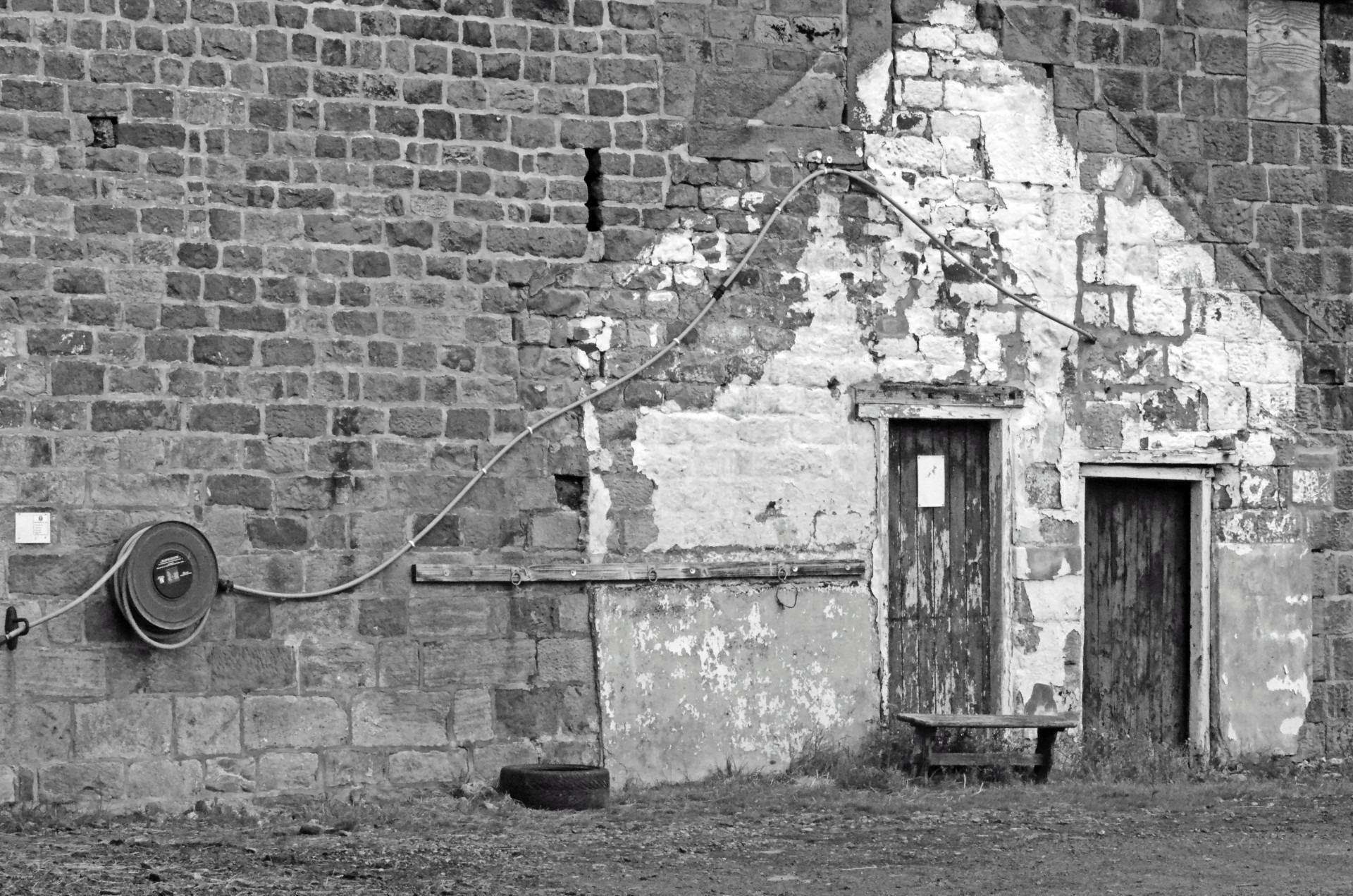черно белые картинки старые домашних уважают вашу старость