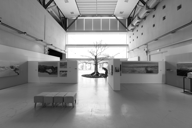 무료 이미지 : 검정색과 흰색, 건축물, 화이트, 바닥, 집, 천장, 홀 ...