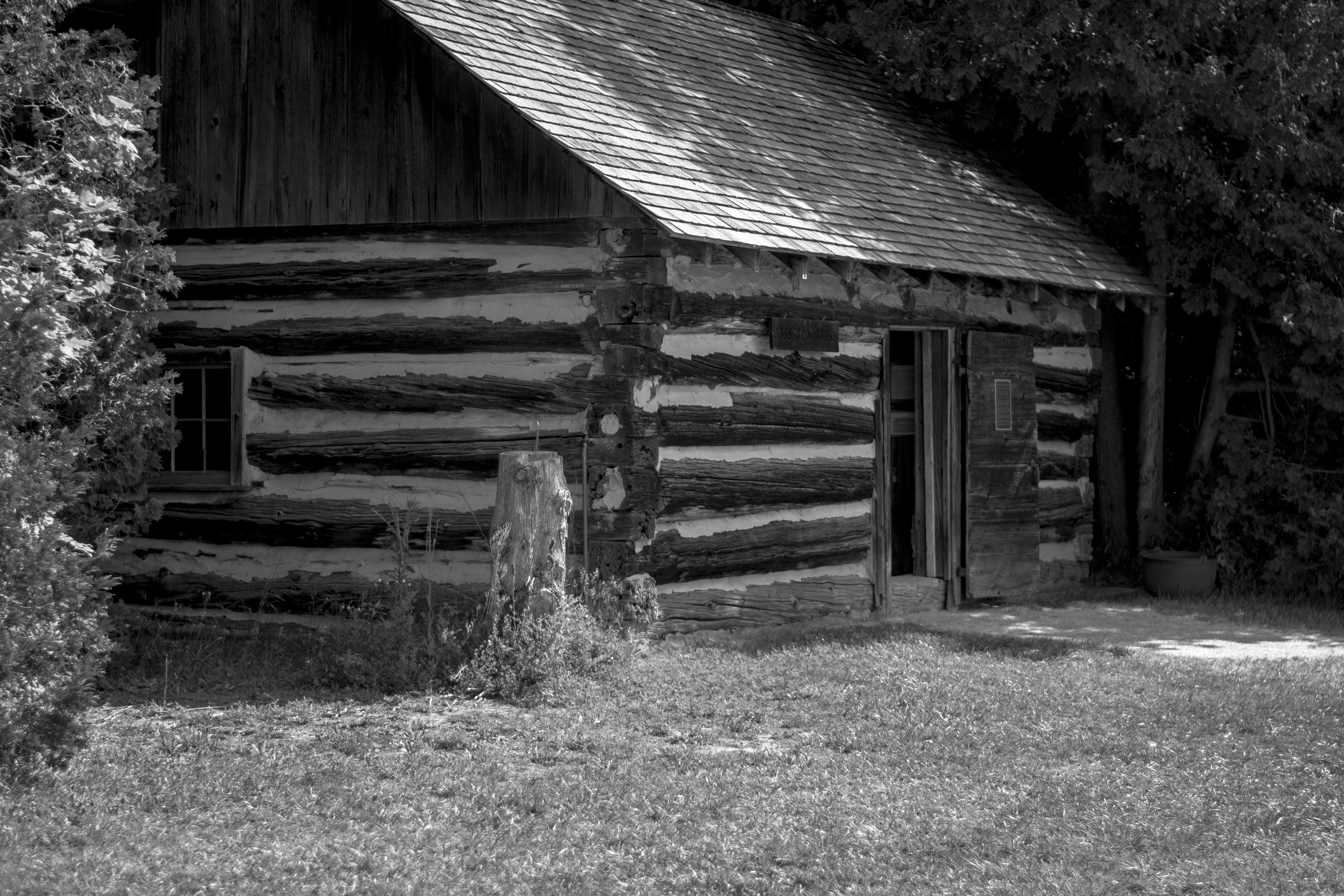черно белые картинки старые домашних важно насколько