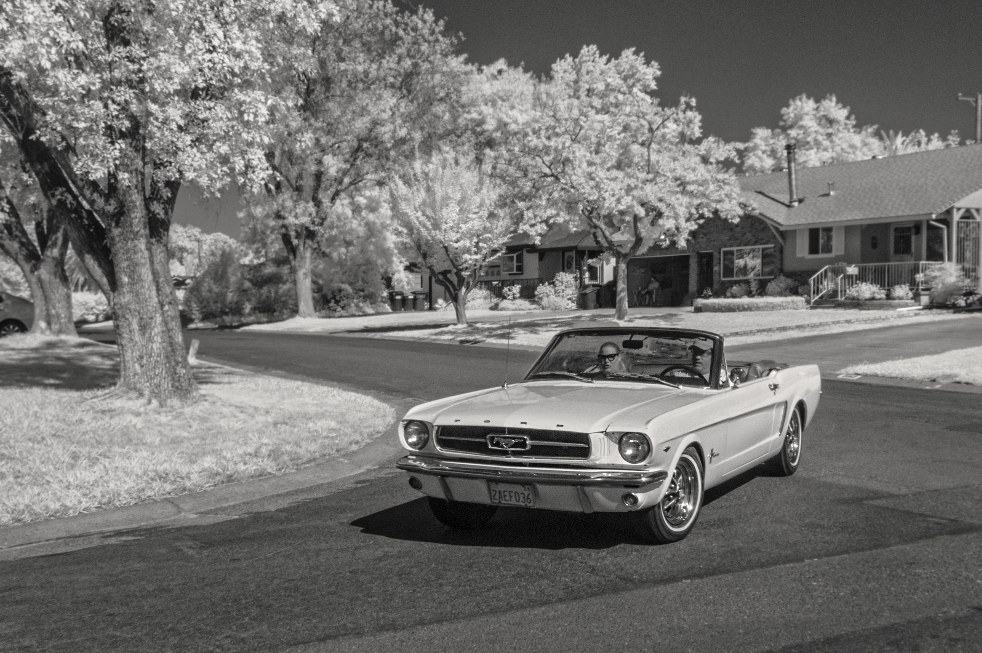 Free black and white wheel suburban vintage car mustang