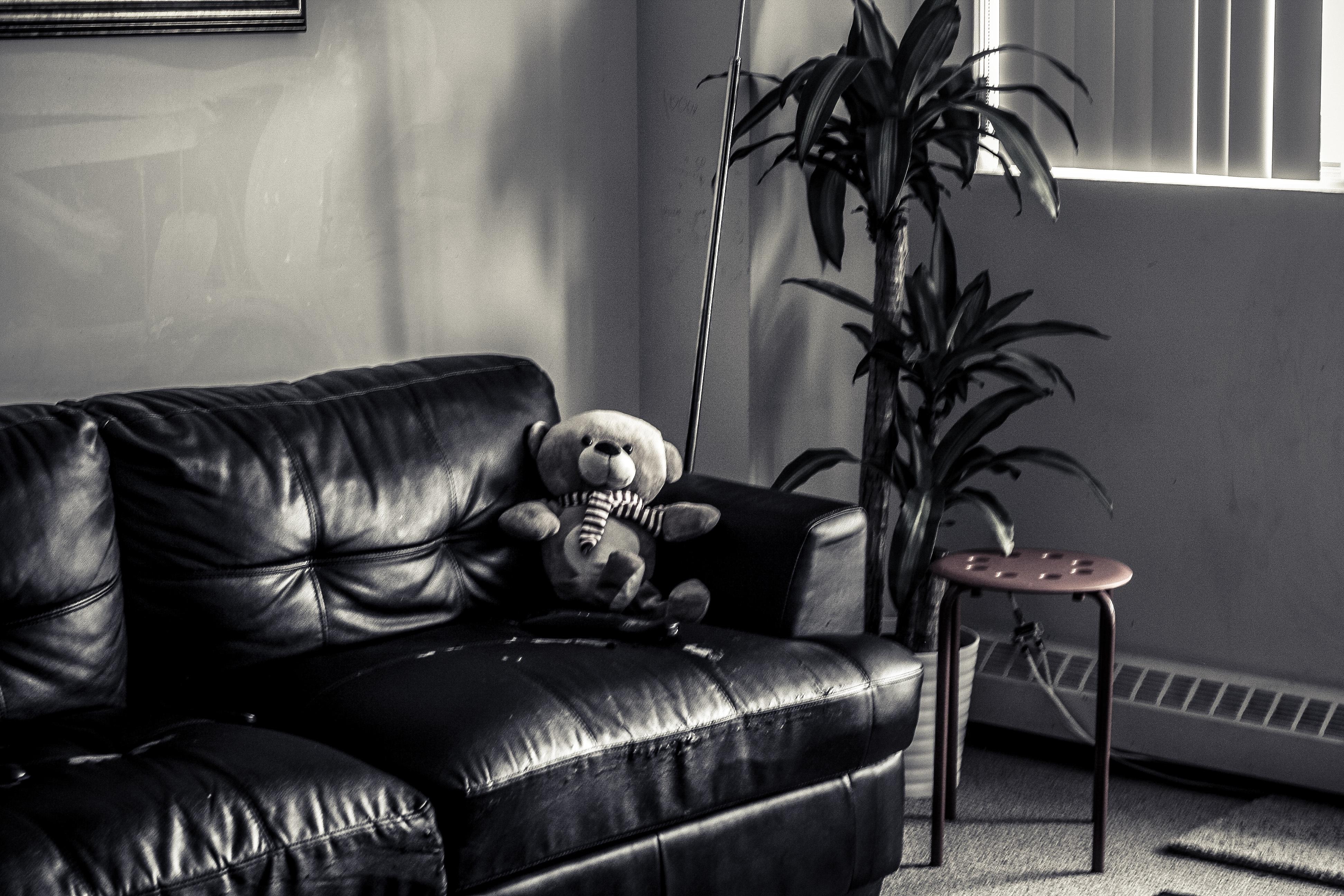 Gambar Hitam Dan Putih Kursi Ruang Keluarga Mebel Kamar Dipan