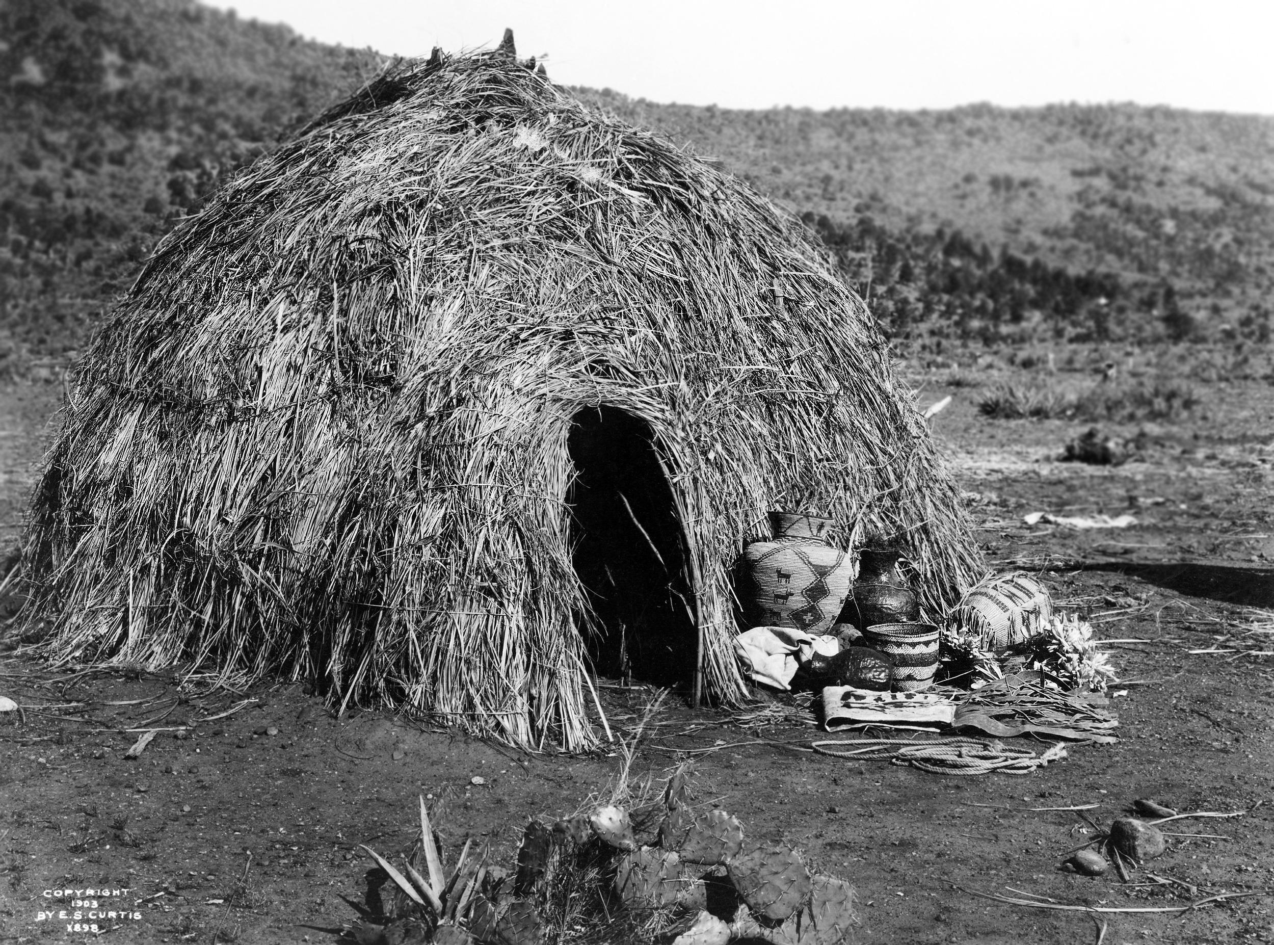 древние жилища человека картинки получила полную