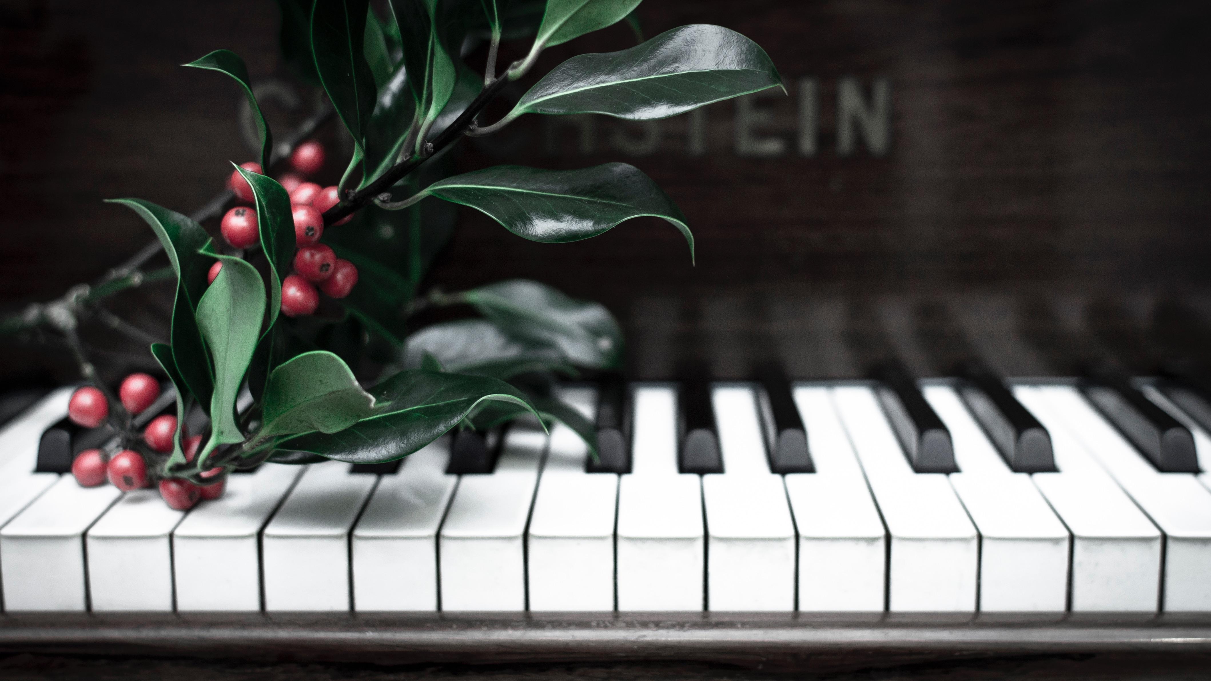красивые картинки пианино рояль прогадаете, если