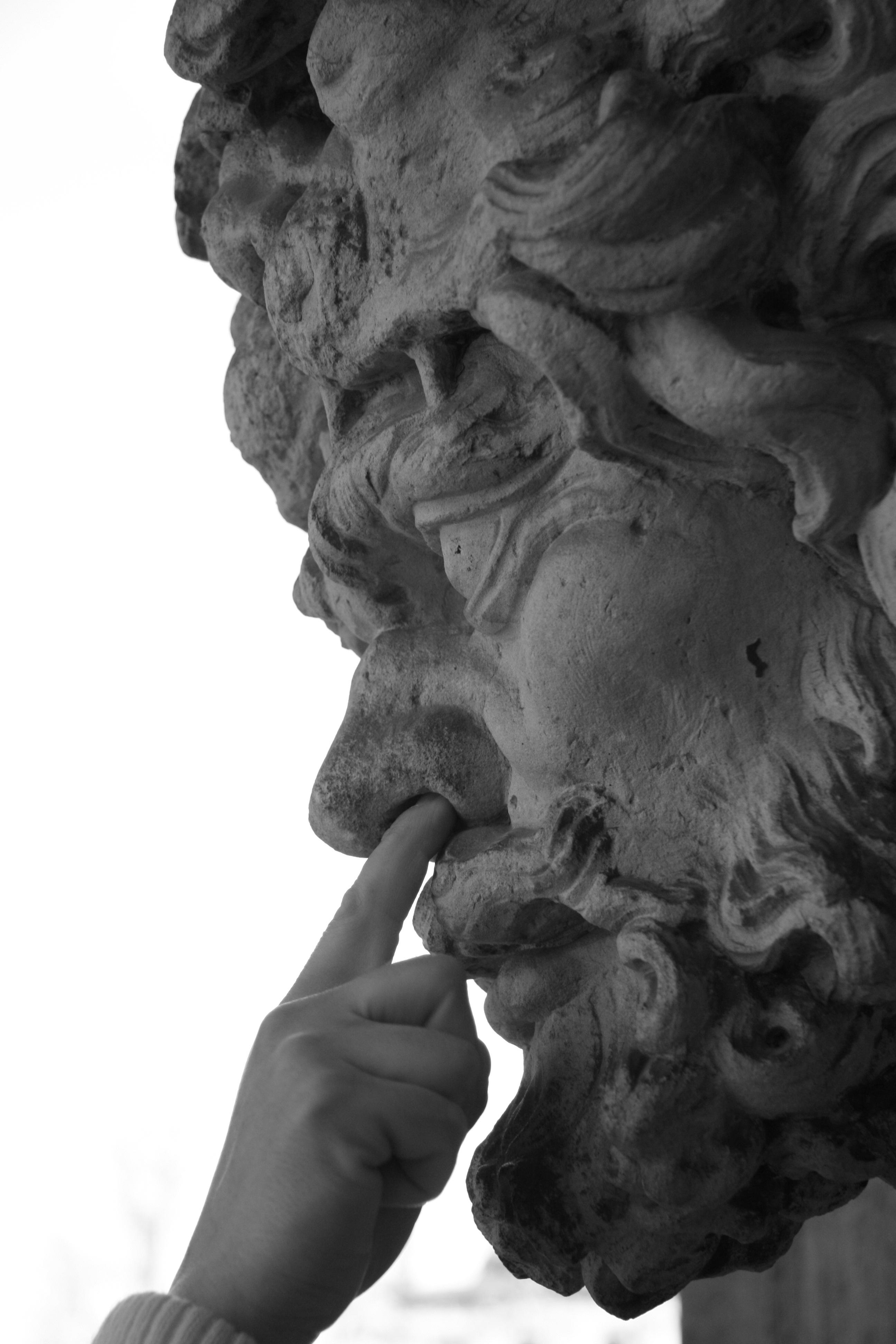 noir et blanc monument statue noir Monochrome sculpture nez art dessin tête chenil Dresden forage Photographie