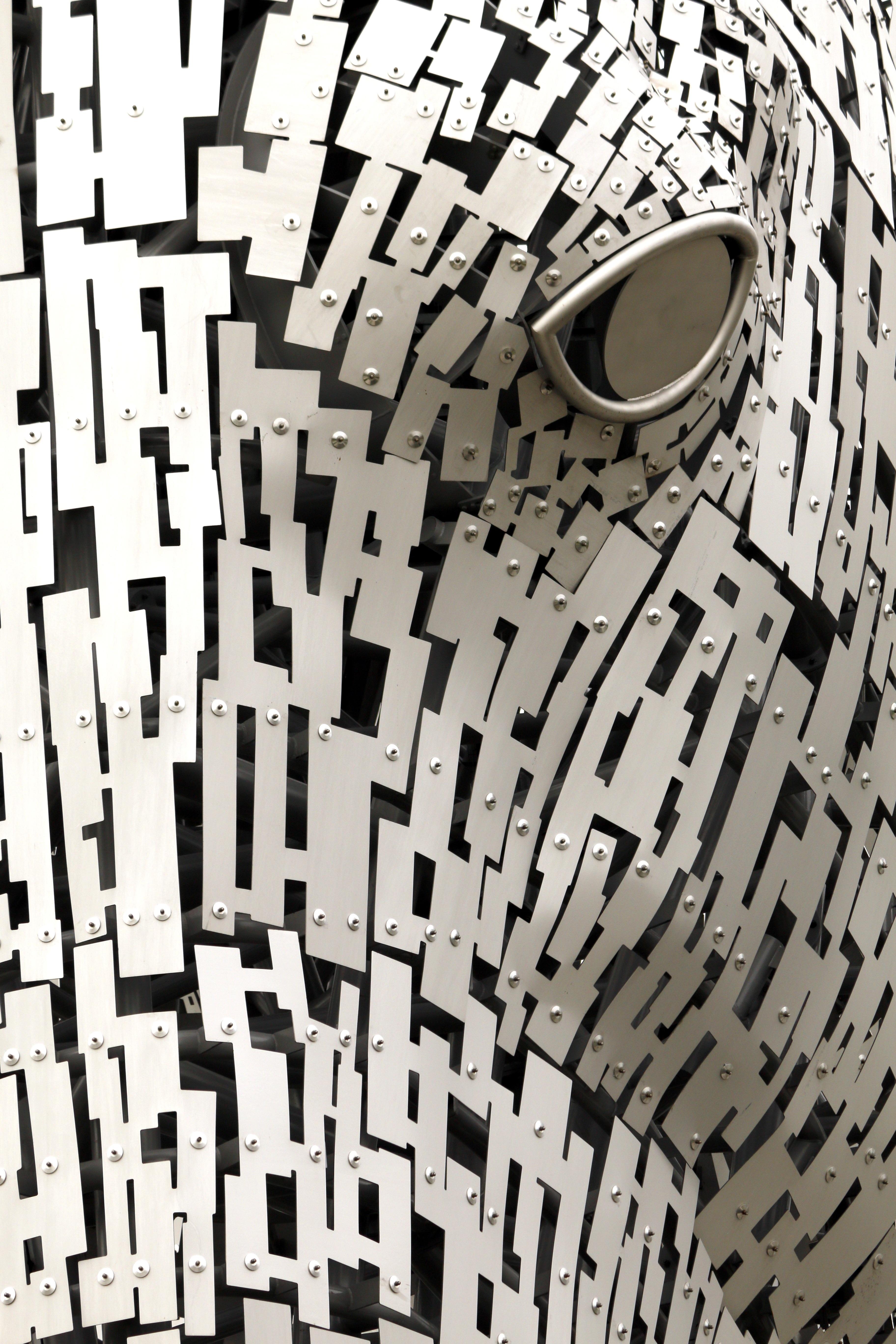 Black and white animal patterns