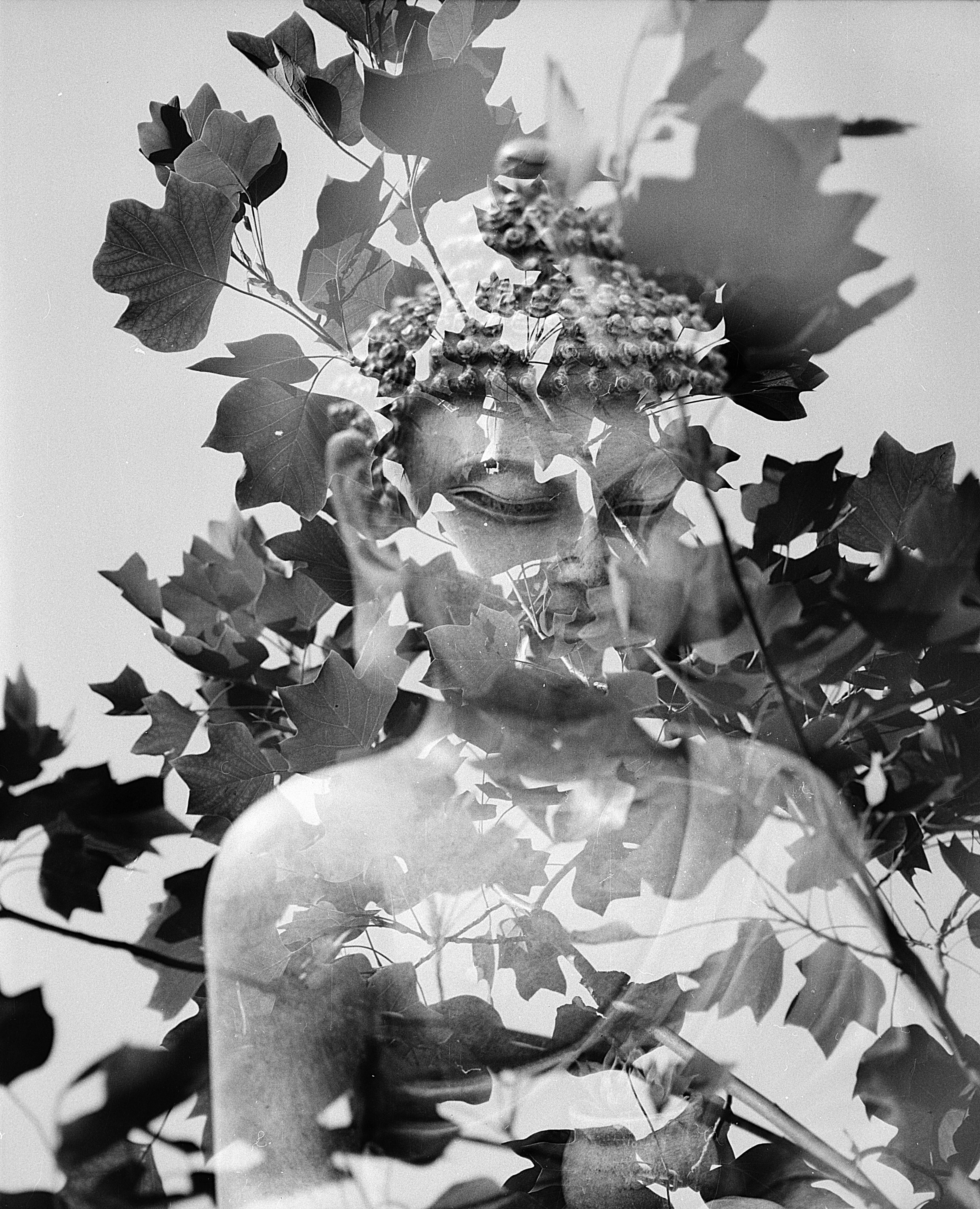 Free images black and white statue sculpture art cool image illustration photograph buddha 180mm i mamiya 6x7 mediumformat rb67 multiexpo