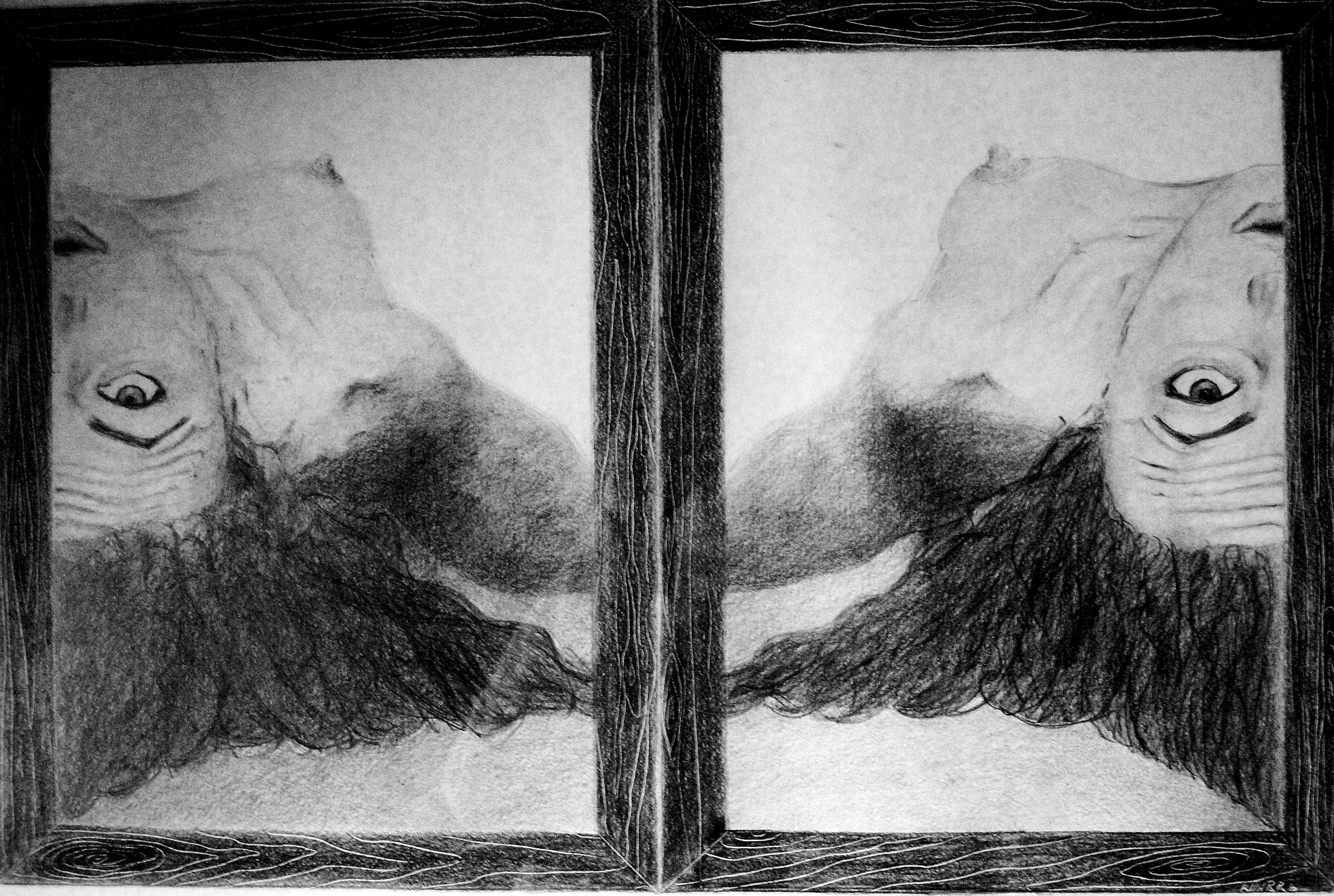 Wonderlijk Gratis Afbeeldingen : zwart en wit, portret, monochroom JR-42