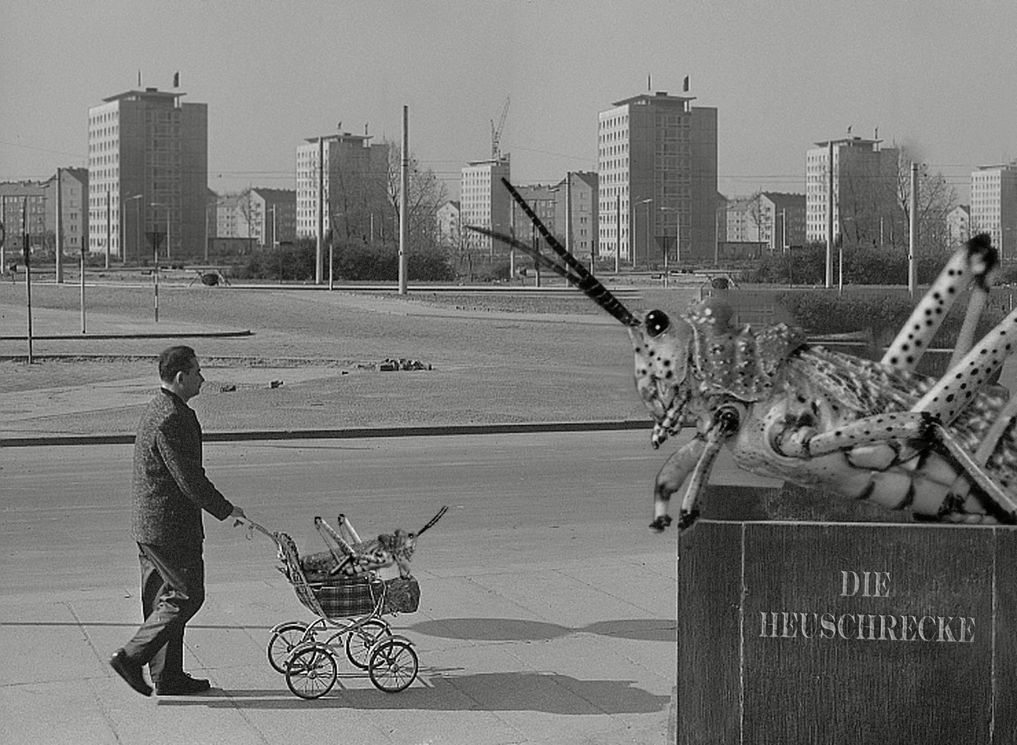 Gambar Hitam Dan Putih Jalan Kota Monumen Satu Warna