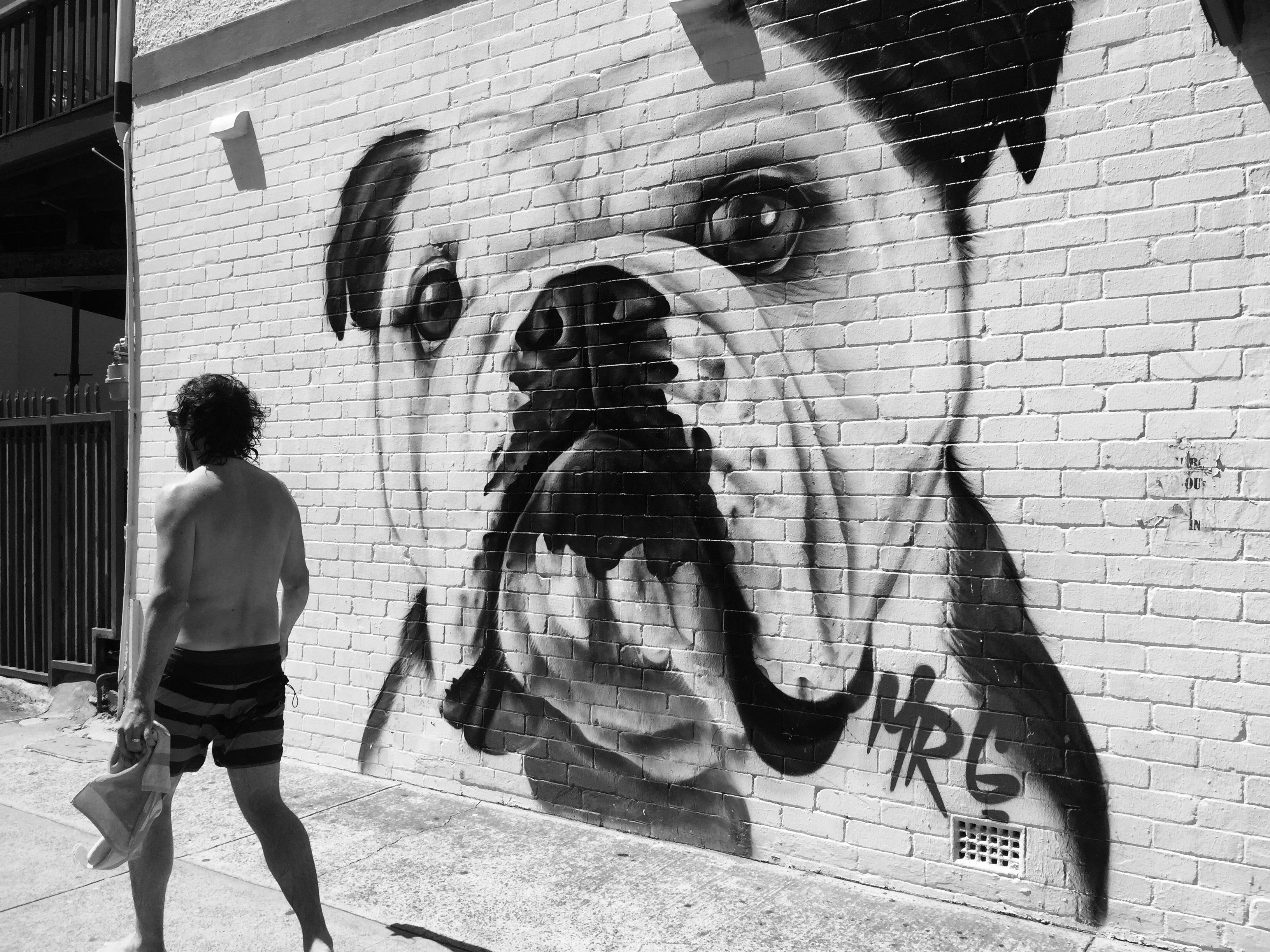 высокие фотографии граффити черно белые район является