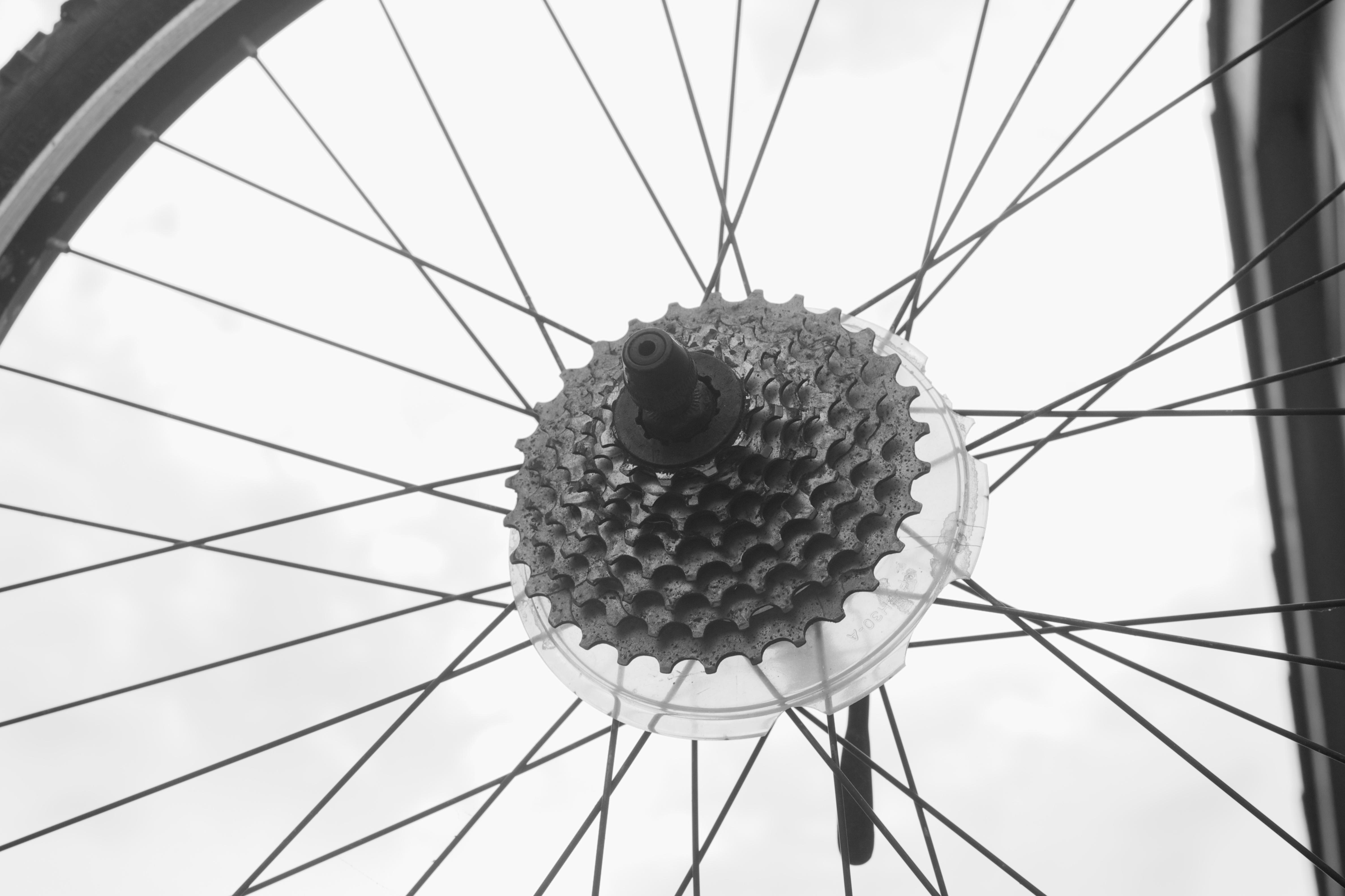 Images Gratuites : noir et blanc, roue, fleur, ligne ...