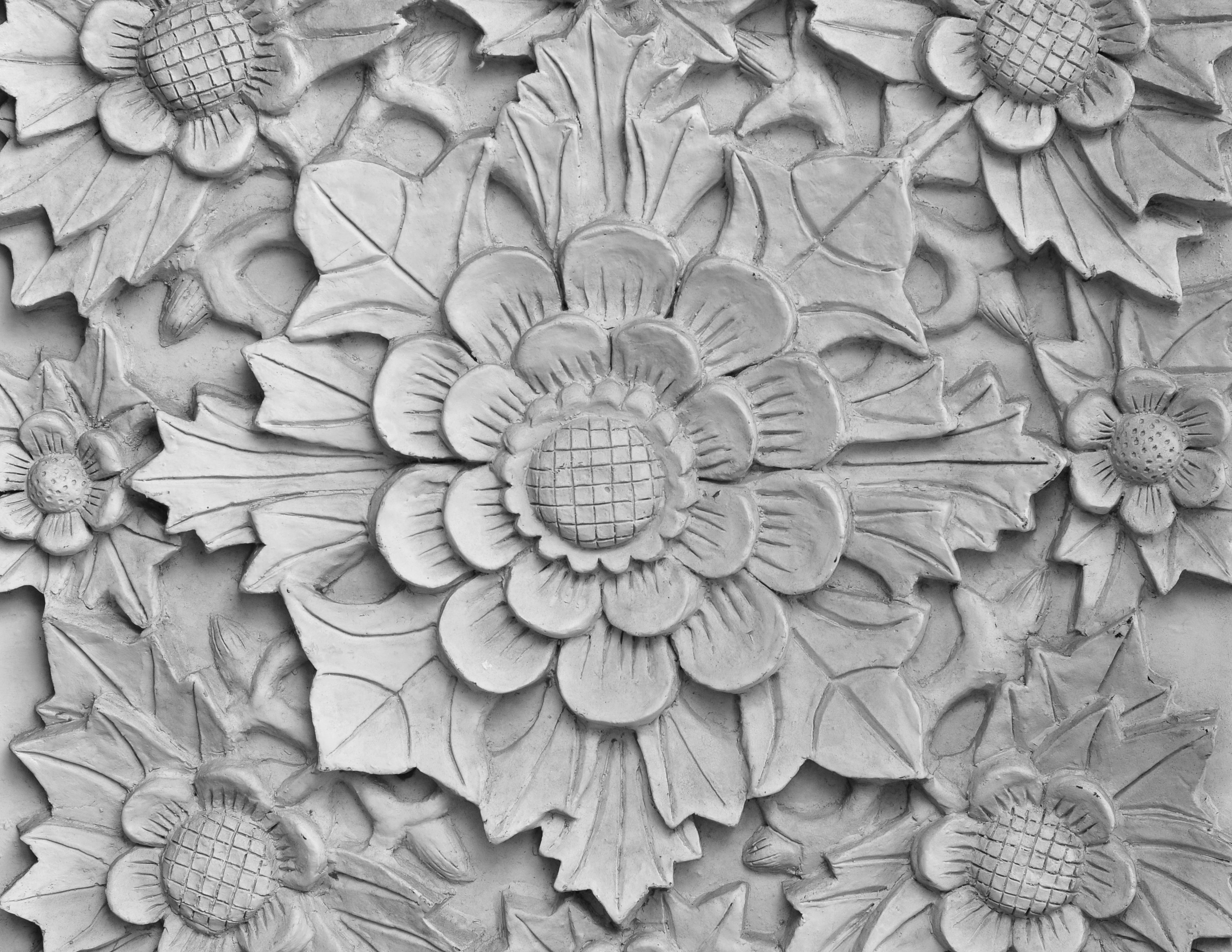 Free Images Black And White Flower Petal Pattern Botany Decor