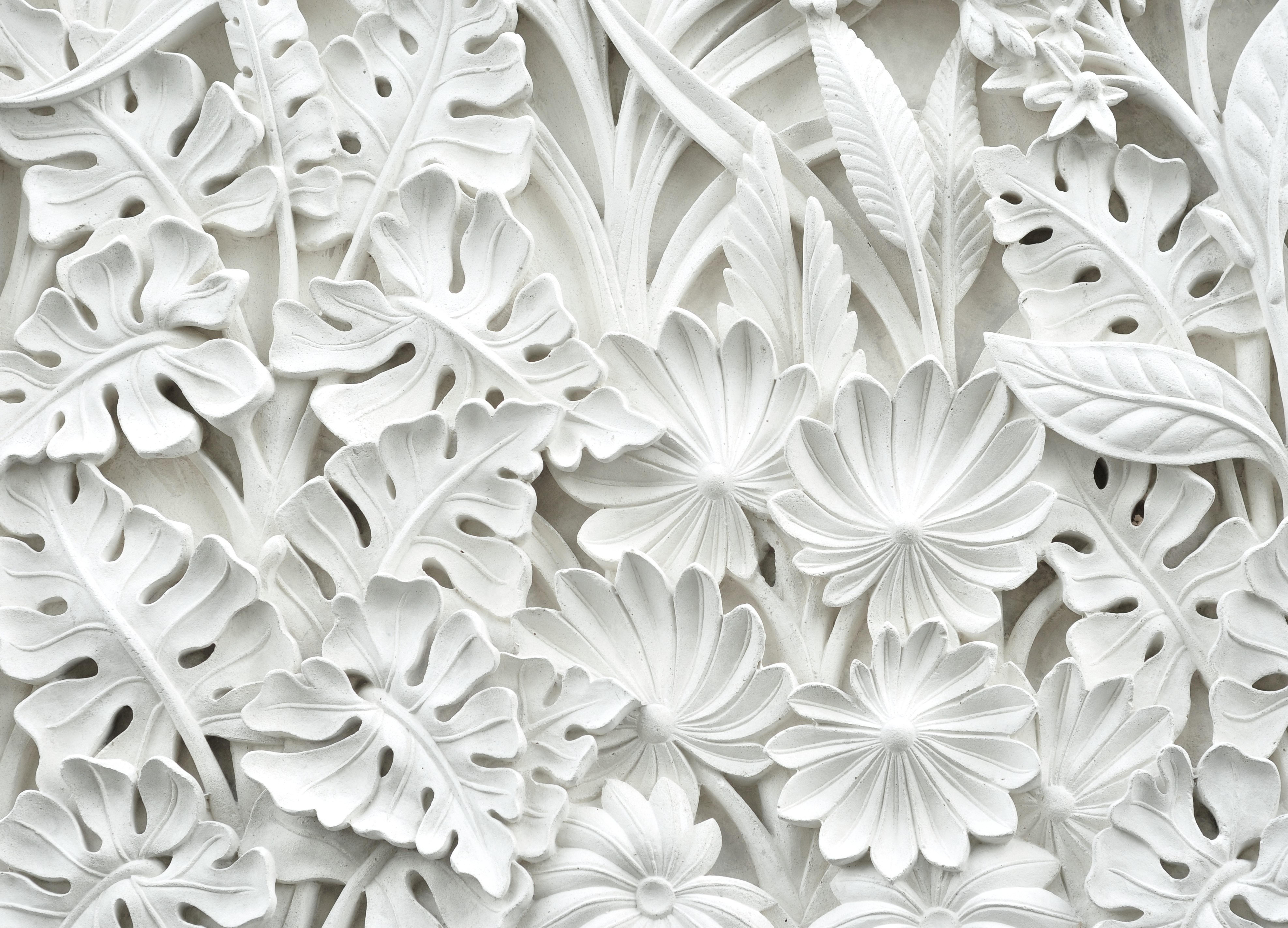 Download 5000+ Wallpaper Bunga Grayscale  Terbaik