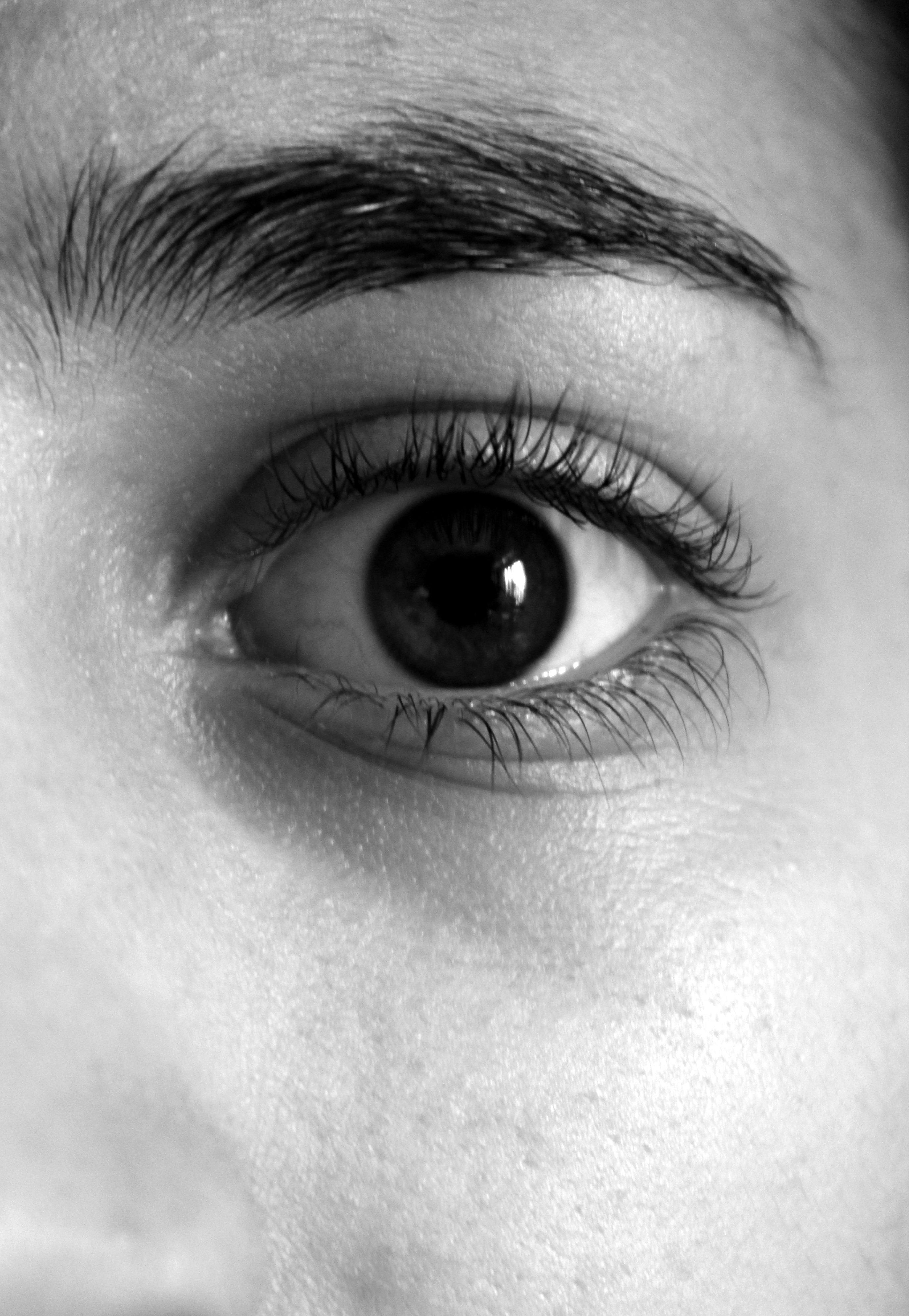 Fotos gratis en blanco y negro fotograf a monocromo ceja pesta a de cerca cuerpo humano - Fotos en blanco ...