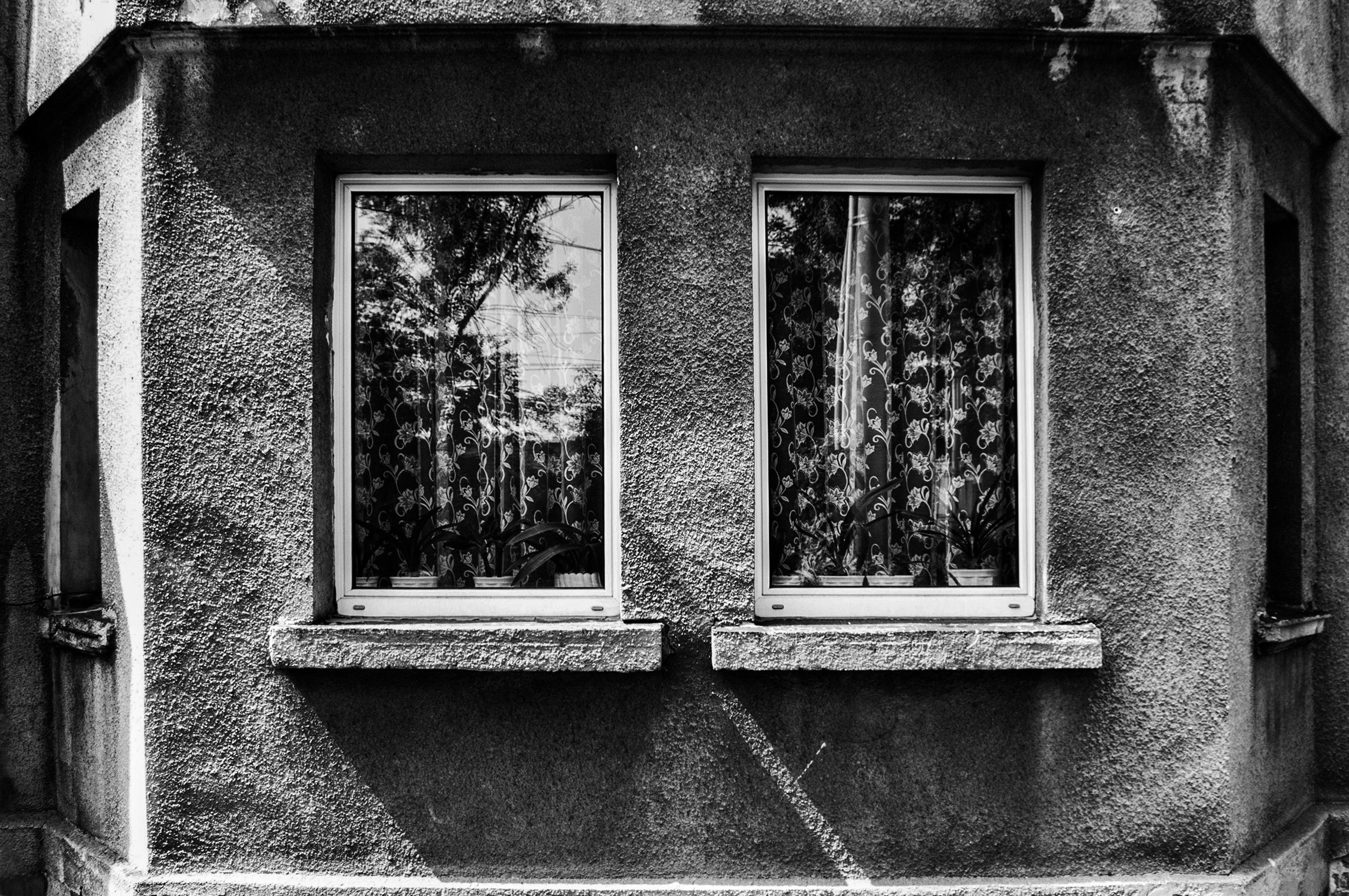 черно белые картинки старые домашних краснодарском крае