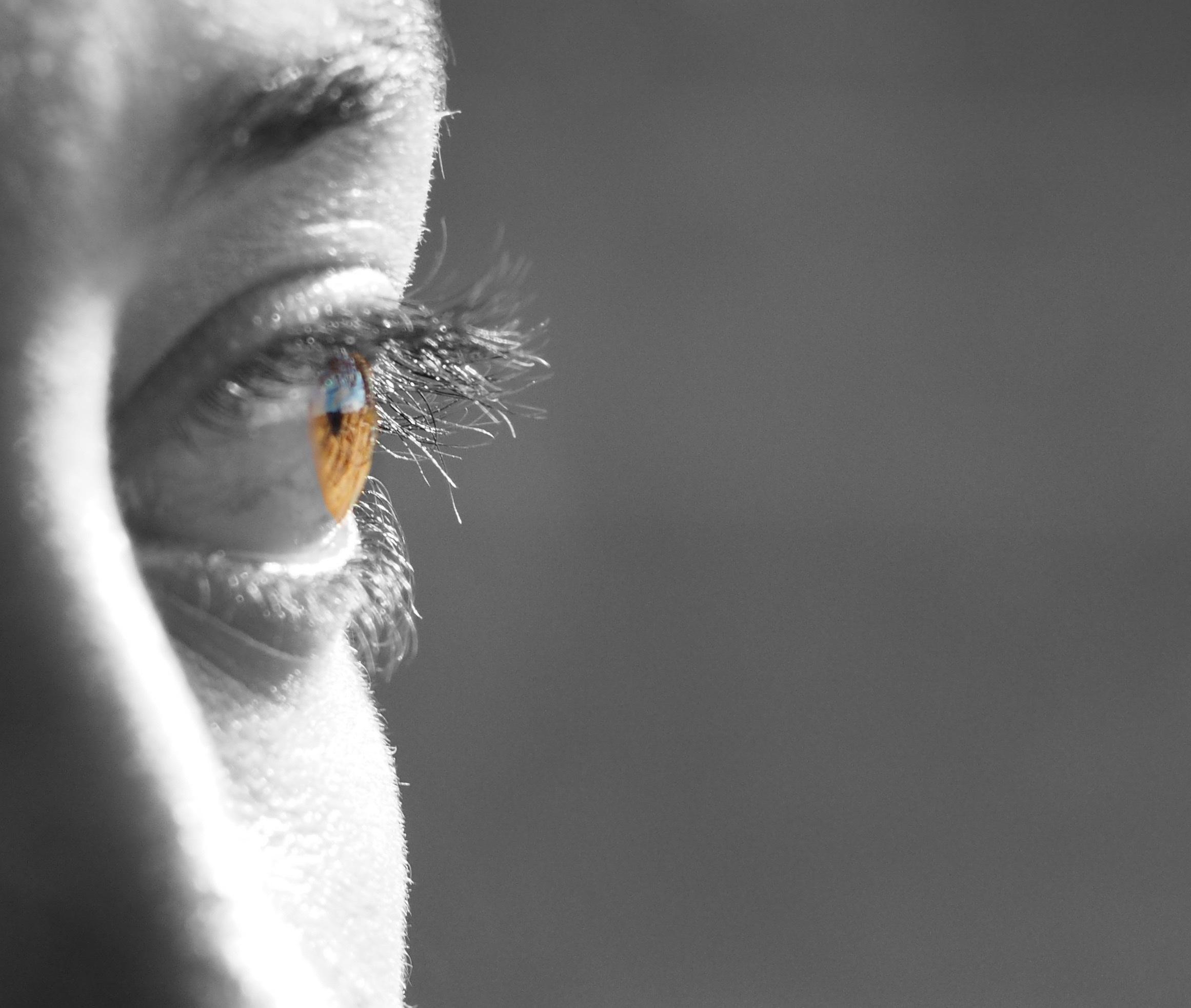 Fotos Gratis En Blanco Y Negro Fotografía Mirando Hembra