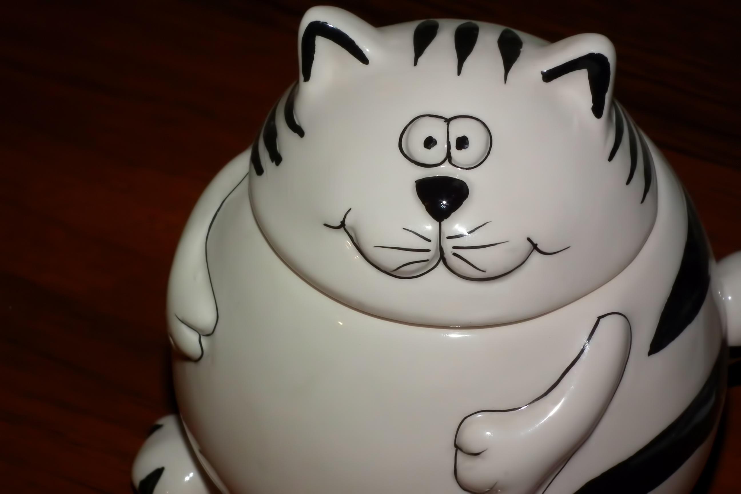 Gambar Hitam Dan Putih Potret Makanan Anak Kucing