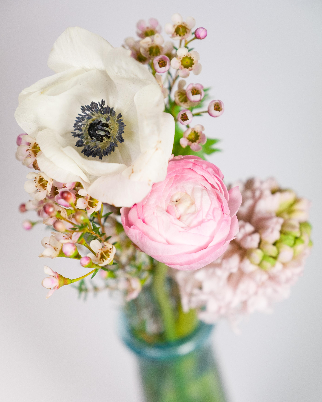 Free Images : blossom, bokeh, petal, spring, yellow, pink, flora ...
