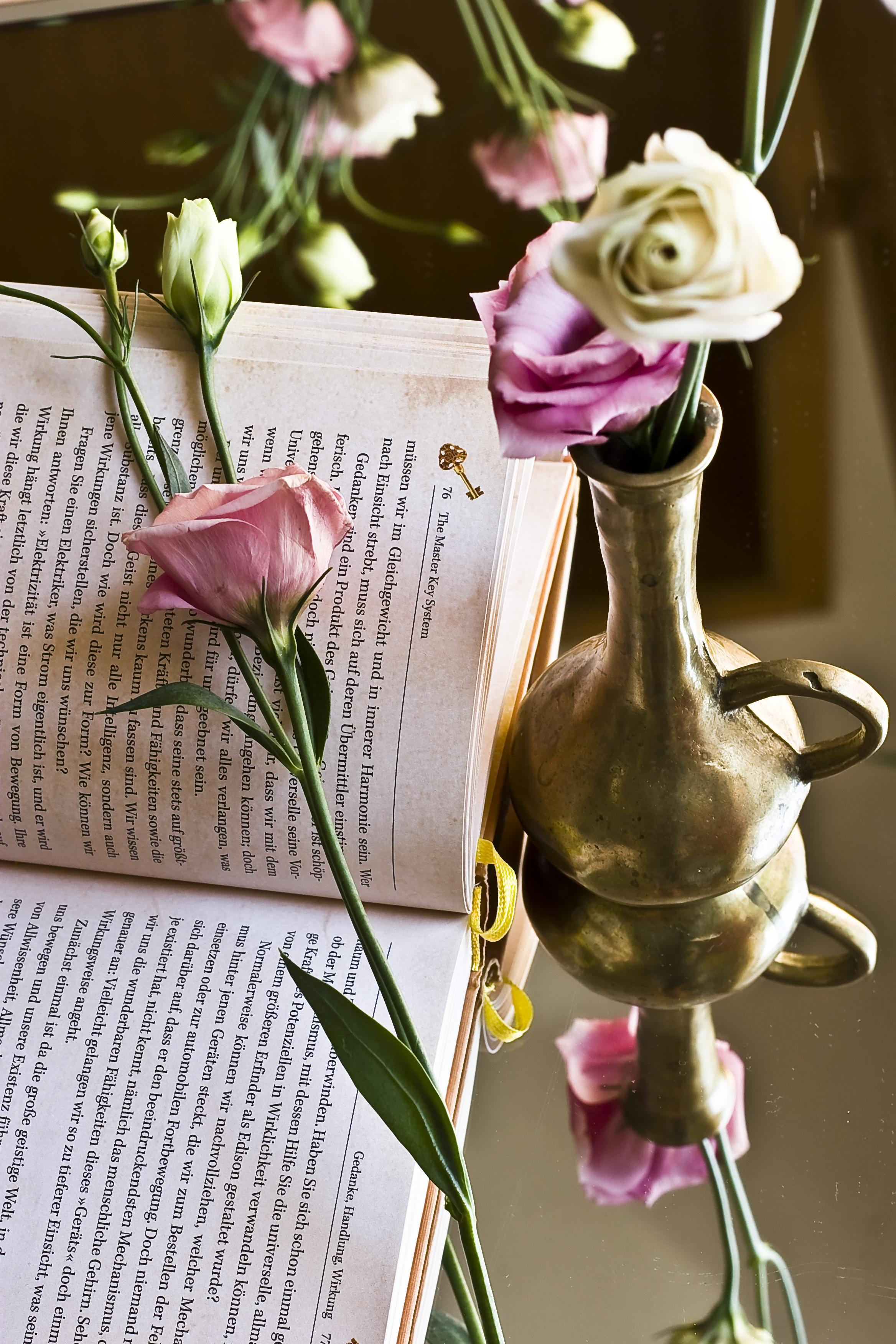 Free Images Blossom Book Novel Read Plant Purple Bloom Vase