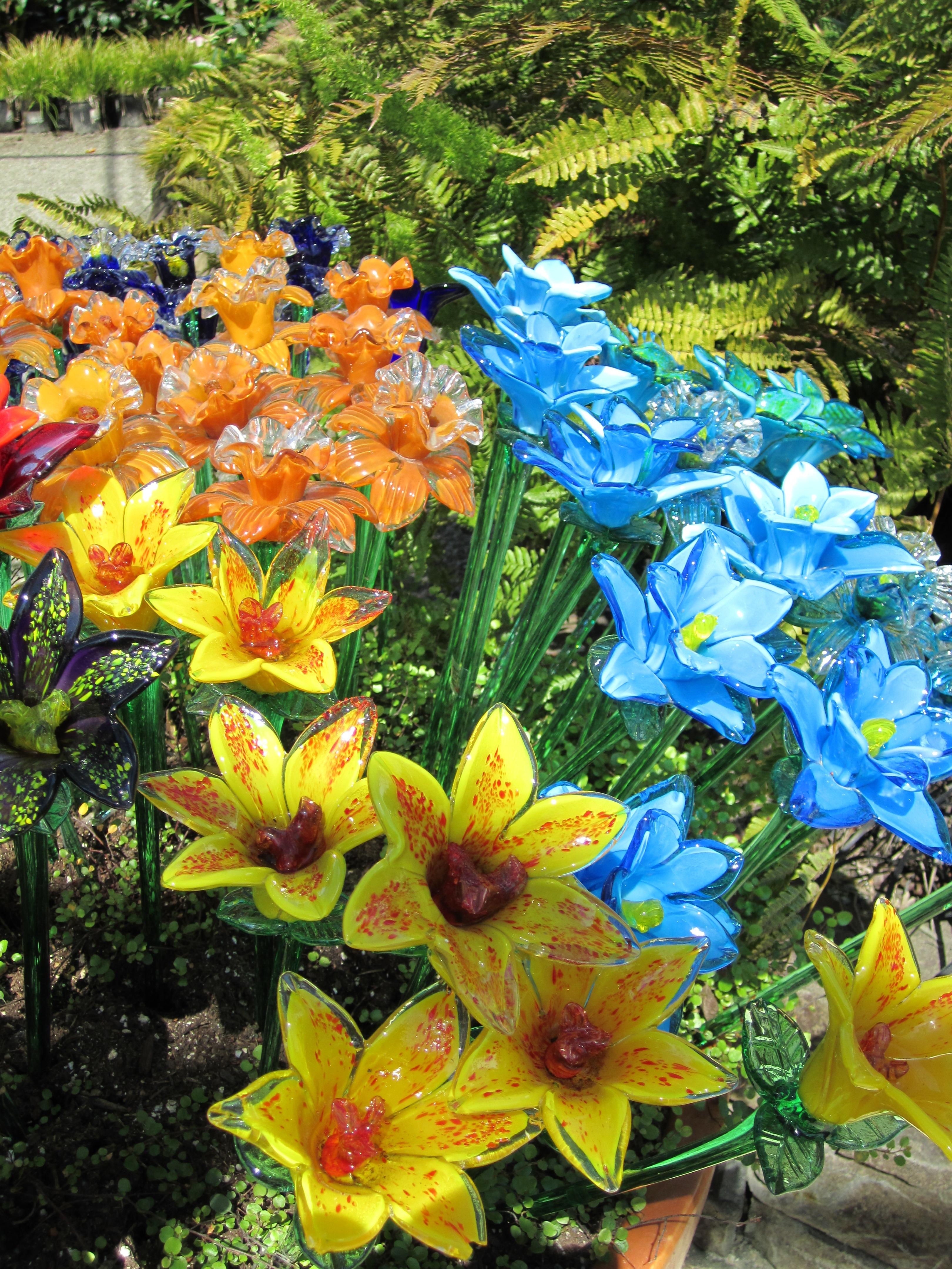 Free Images : blossom, flower, petal, glass, floral, bouquet ...