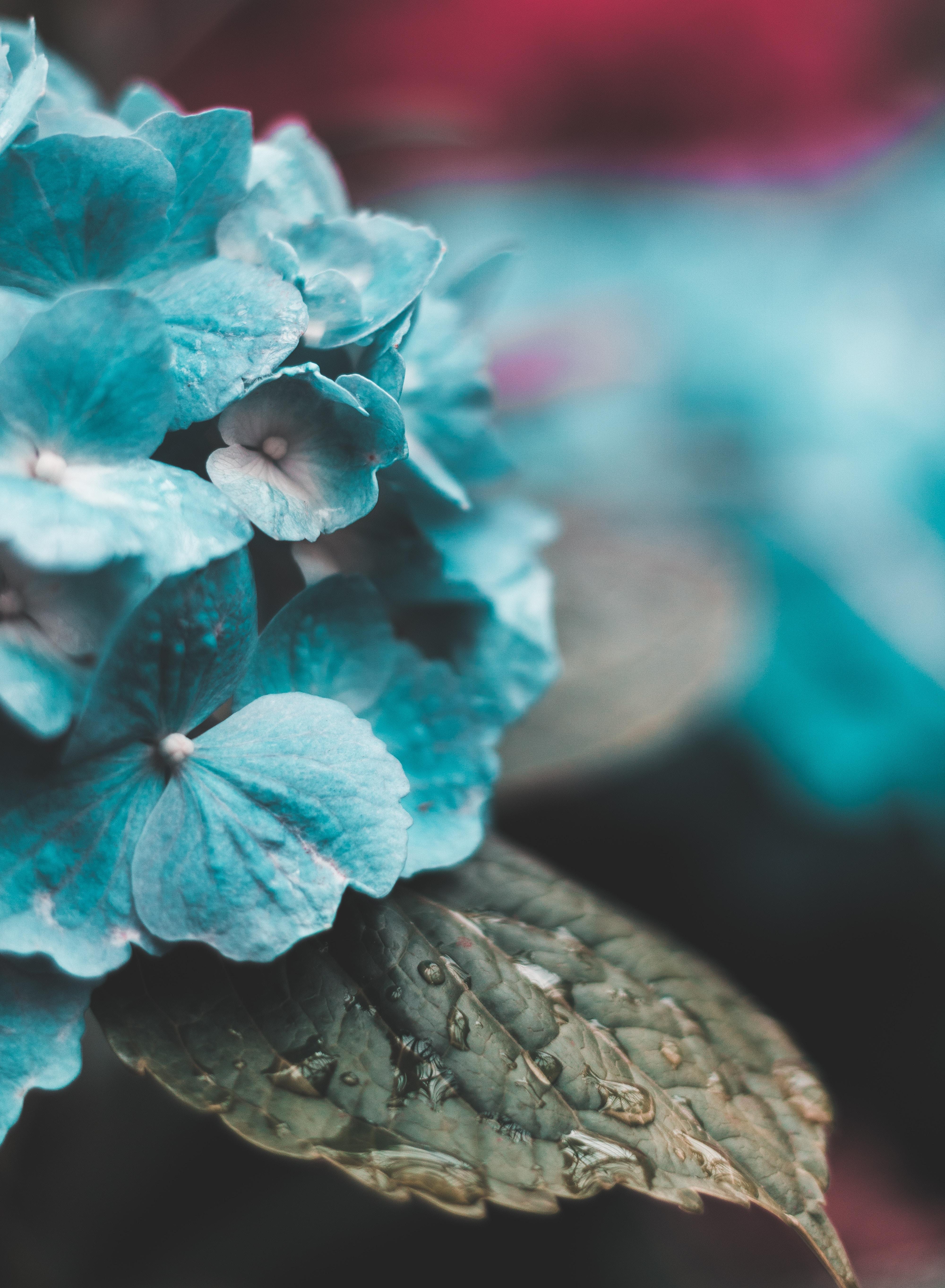 блики холодных картинки в голубом стиле маленьком поселке урдома