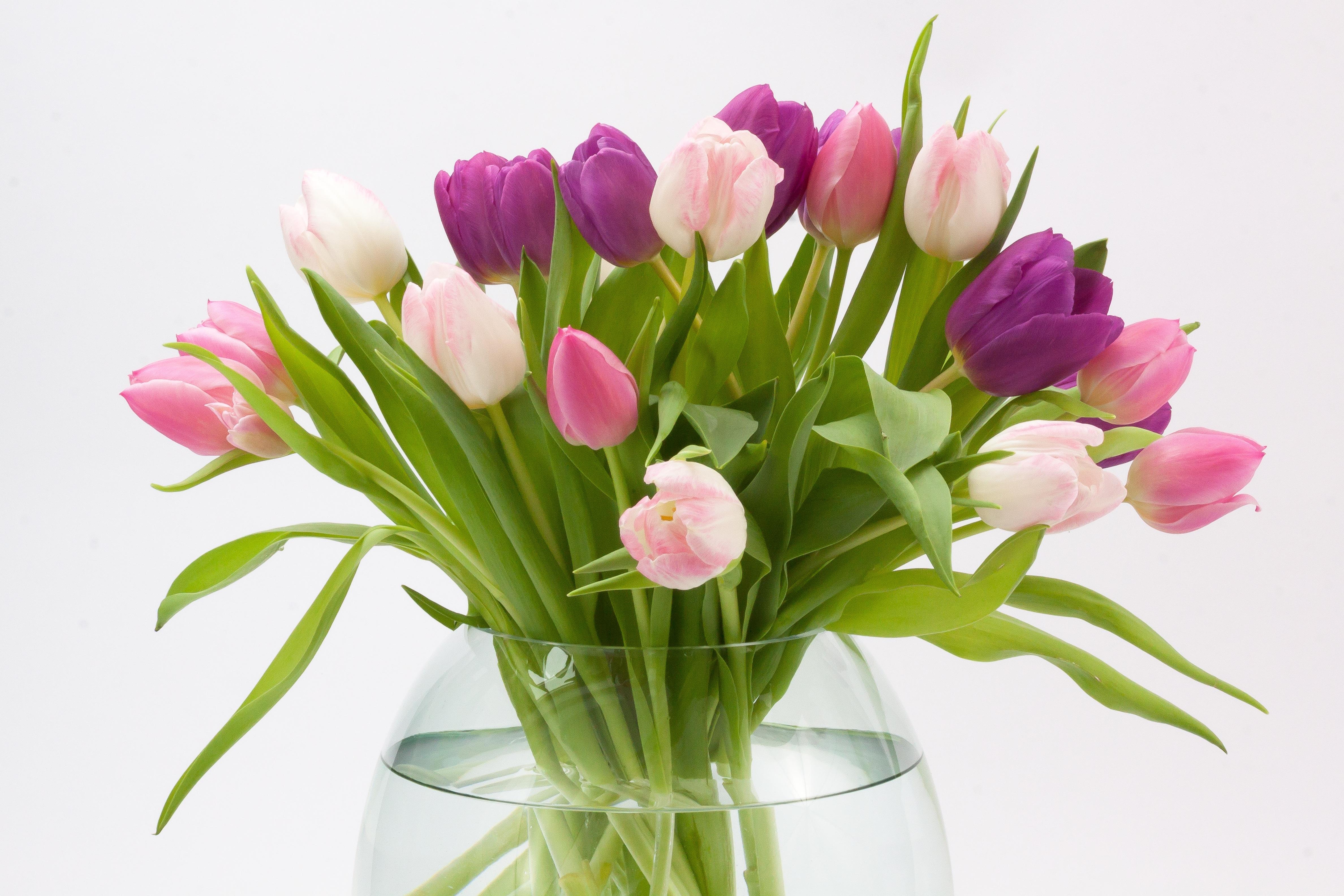 Фото мужчина с тюльпанами тогда