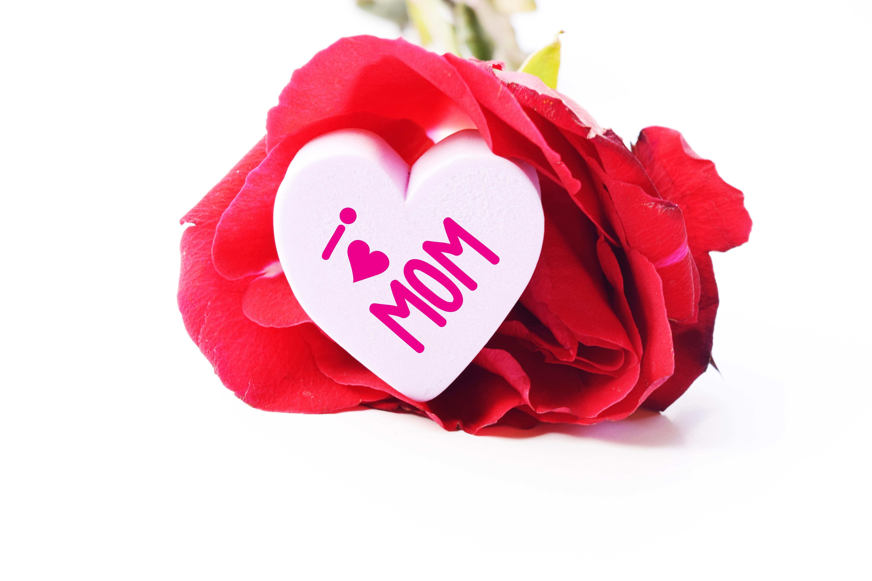 Boite Valentin Fleurs Bouquet Rouge Coeur Roses Amour