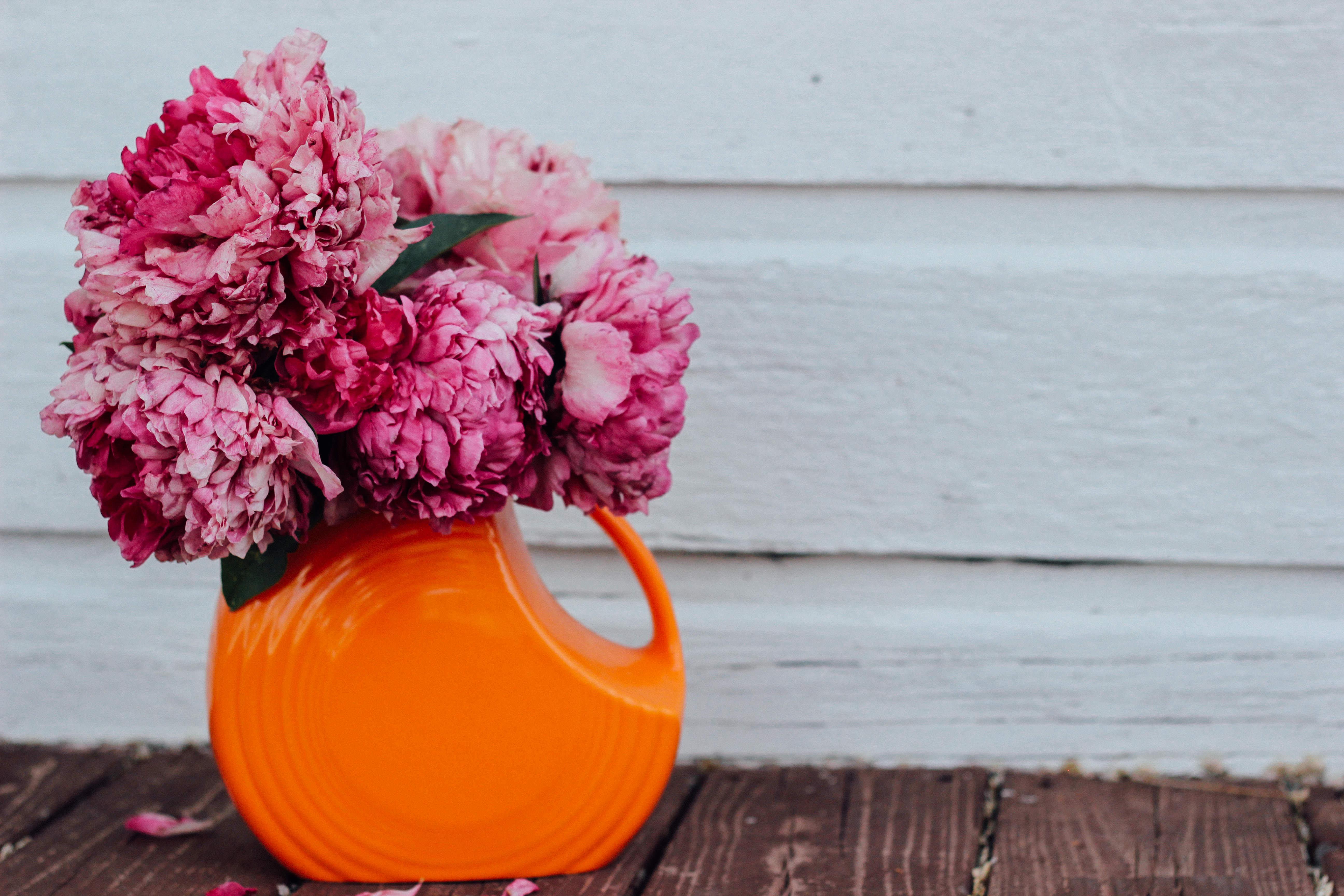 Free Images Blossom Texture Petal Bloom Rustic Summer Vase