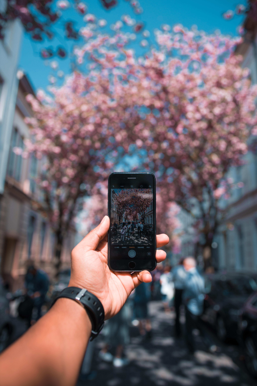 фотобанки фотки с телефона означает старший ангел