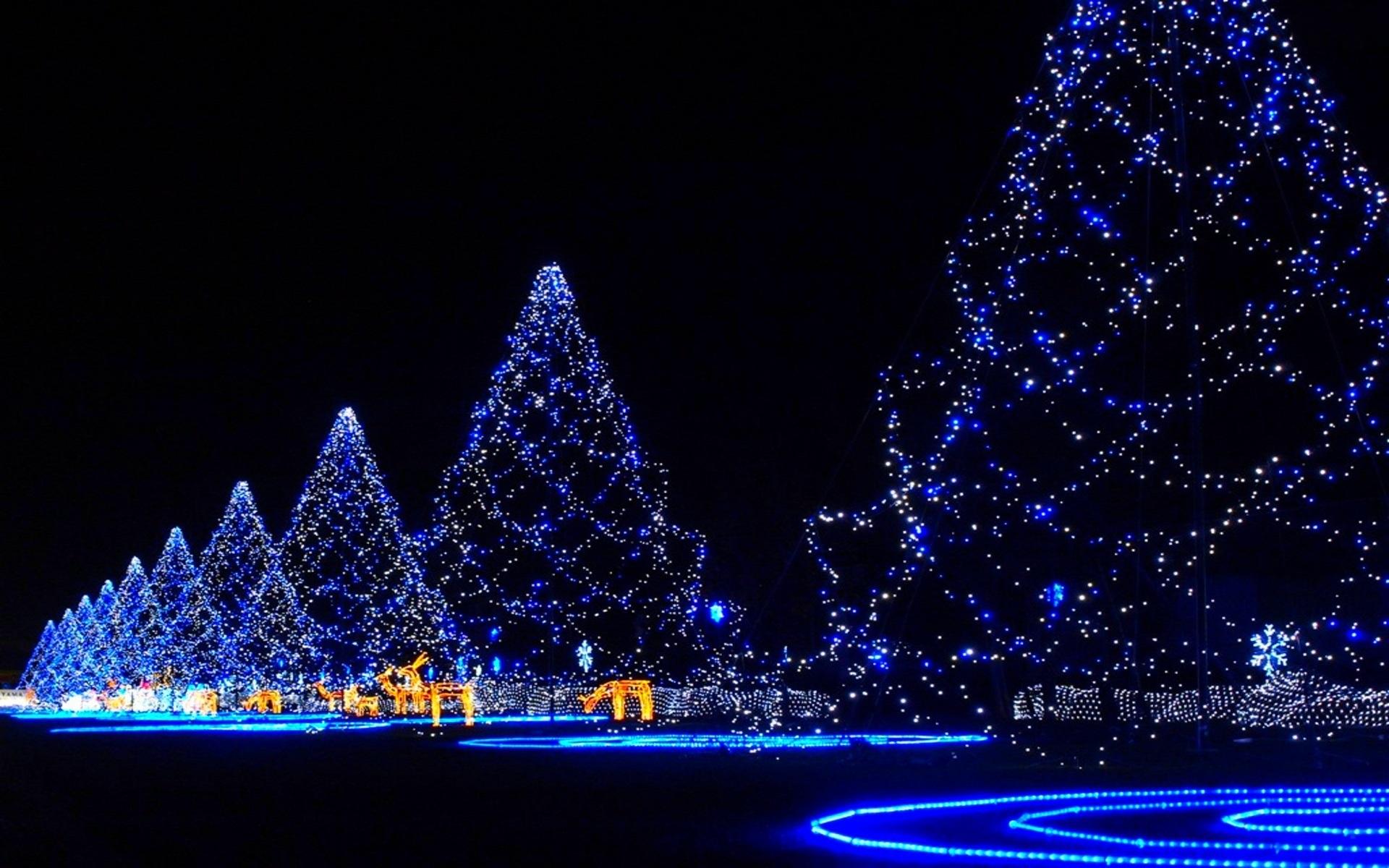 Free images blue decor christmas tree christmas for Blue decoration xmas tree
