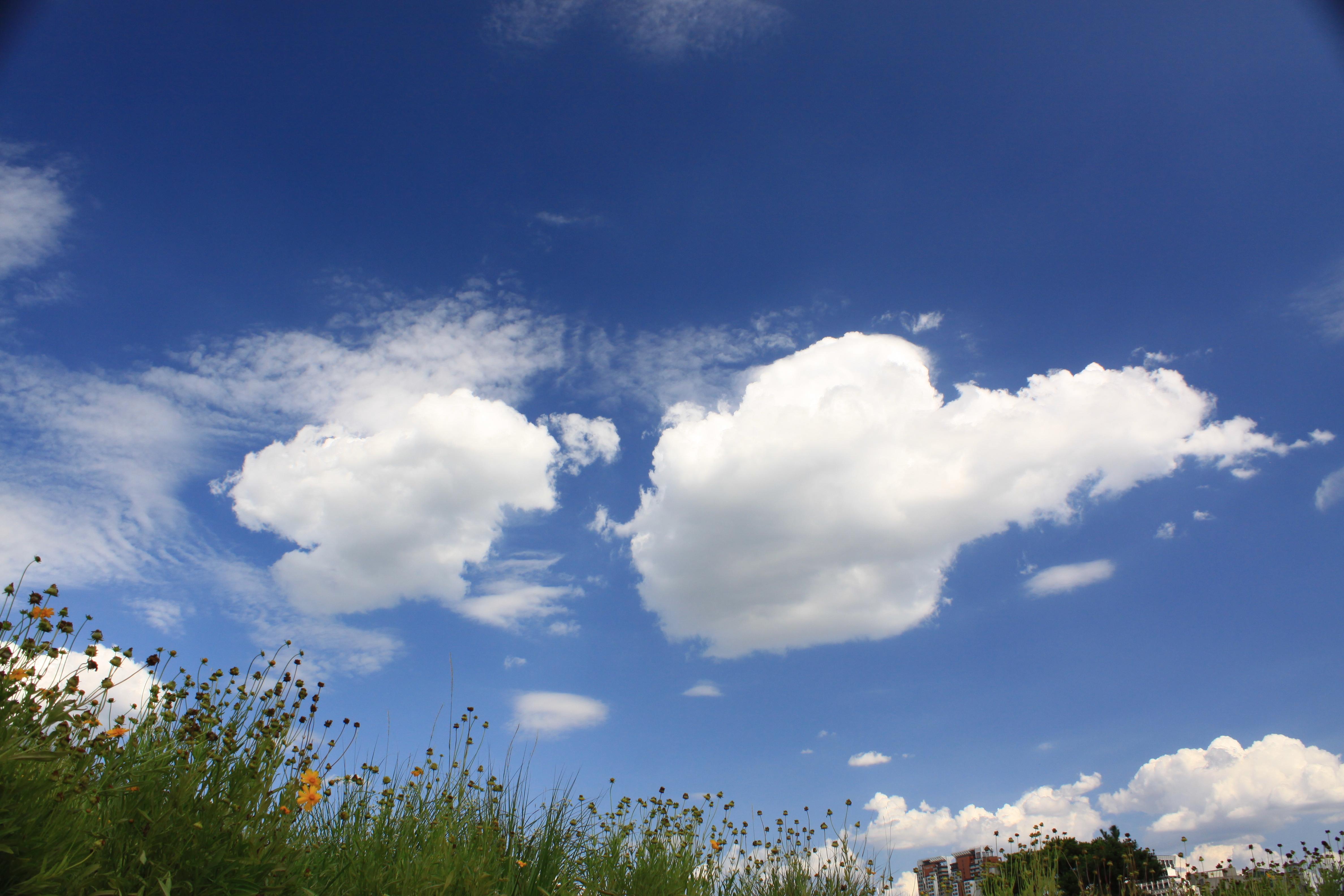над нами небо голубое картинки мае