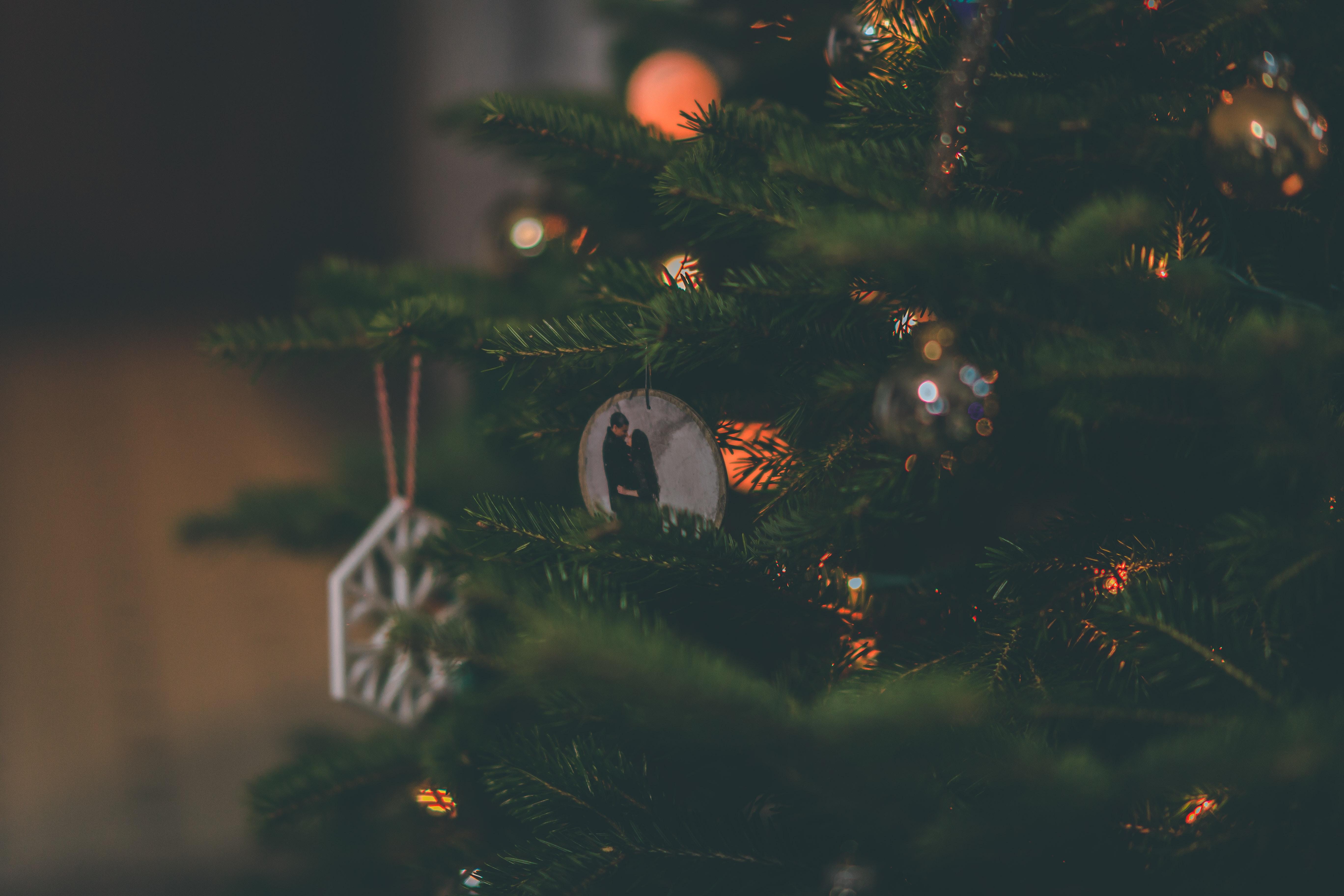 Fotoğraf Bulanık Arka Plan Bokeh Yılbaşı Topları Noel Süsleri