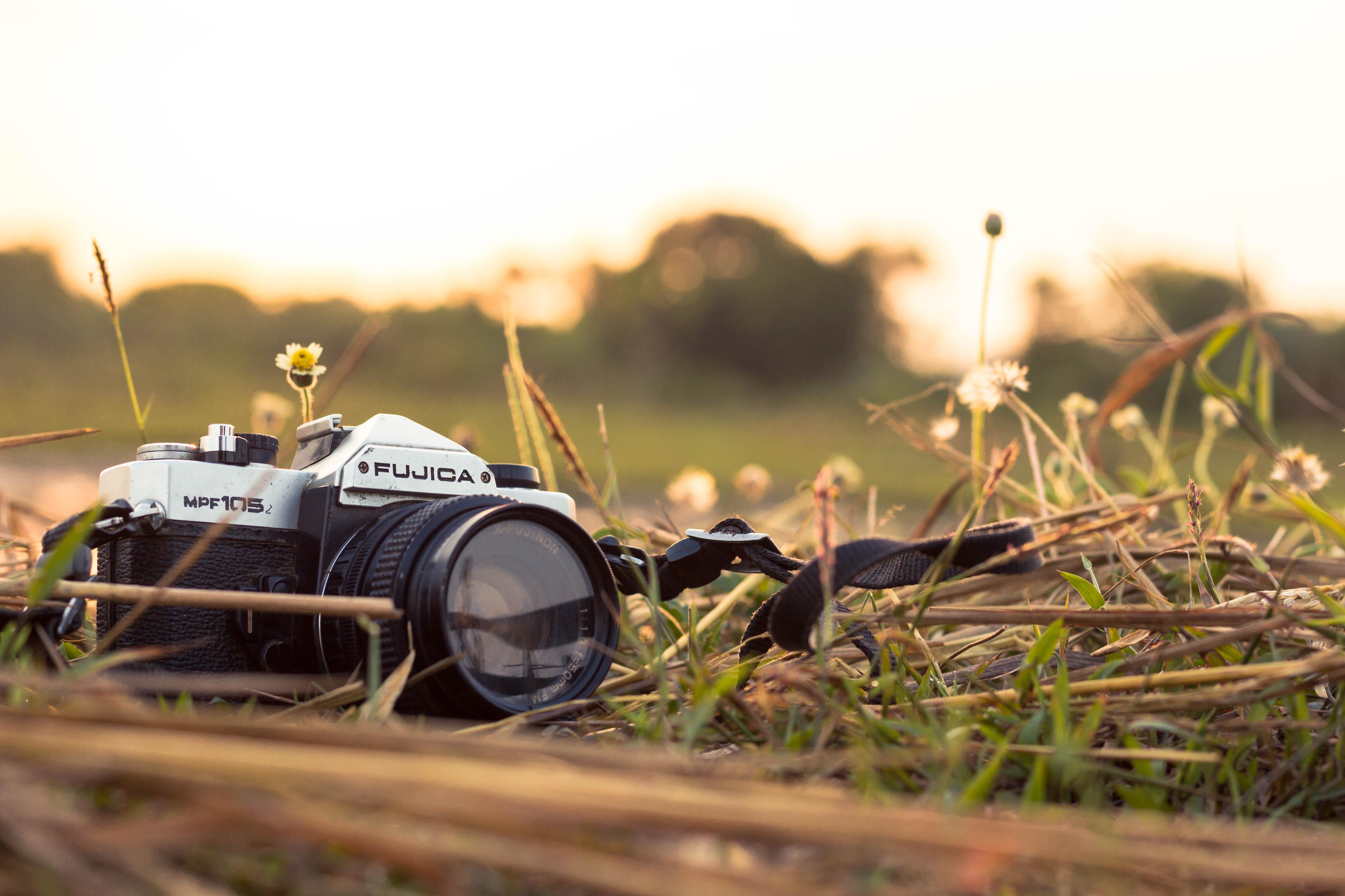 Gambar Latar Belakang Kabur Lensa Kamera Warna Siang