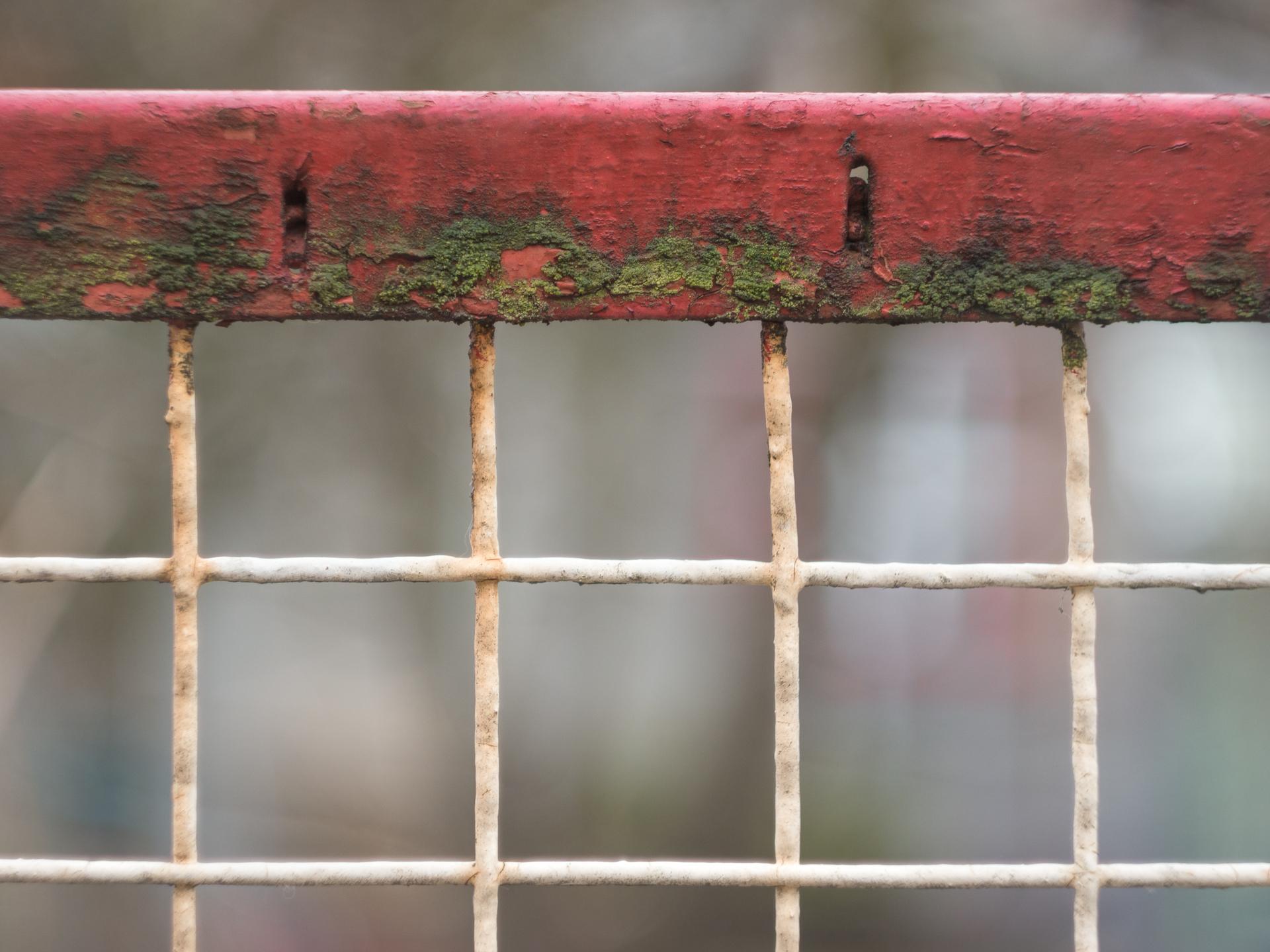Eitelkeit Zaun Design Referenz Von Bokeh Fence Wood White Window Wall Green