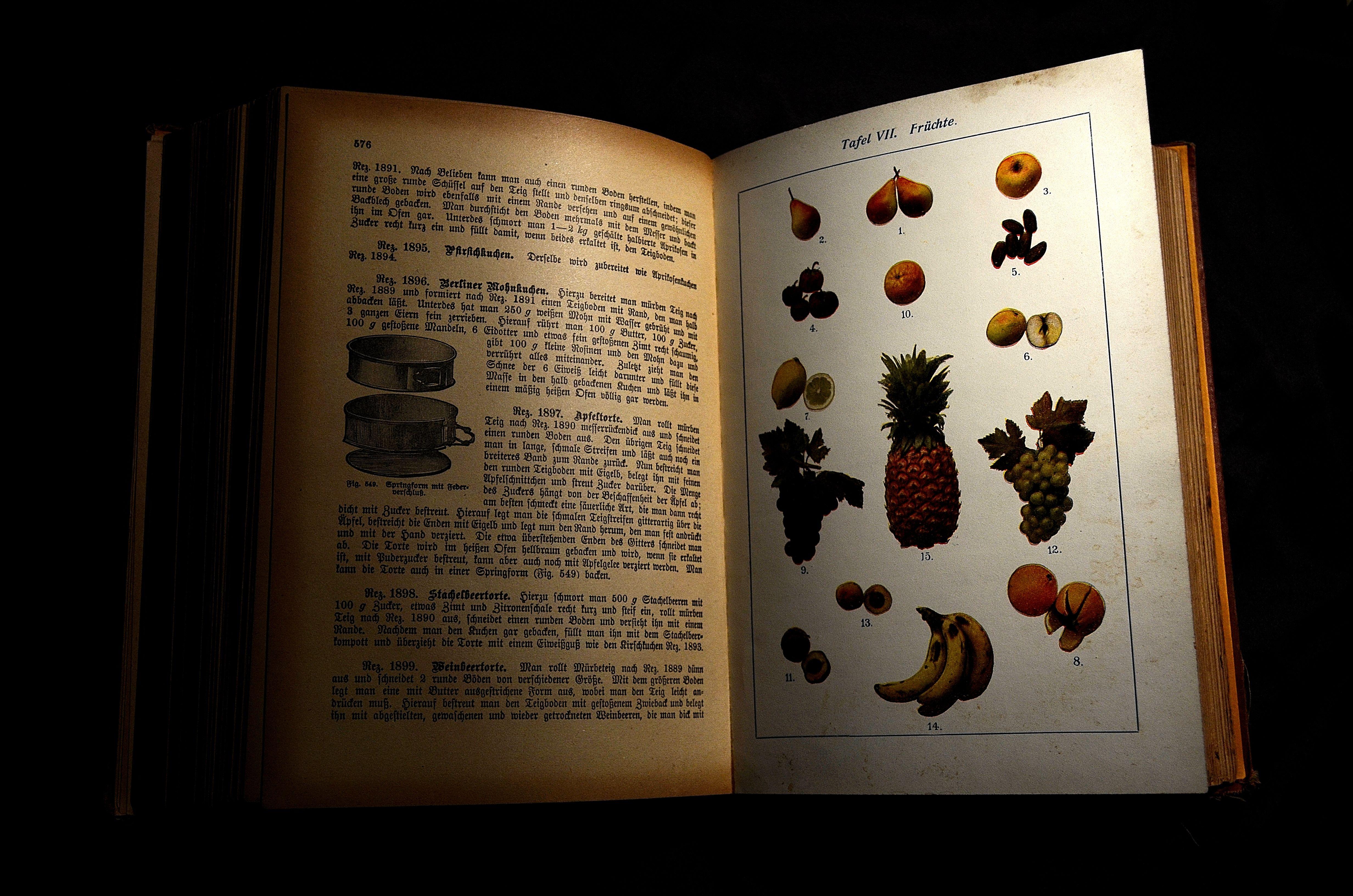 Libro art dise o texto p ster imagen caligraf a libro de cocina anticuario viejo libro de cocina libro