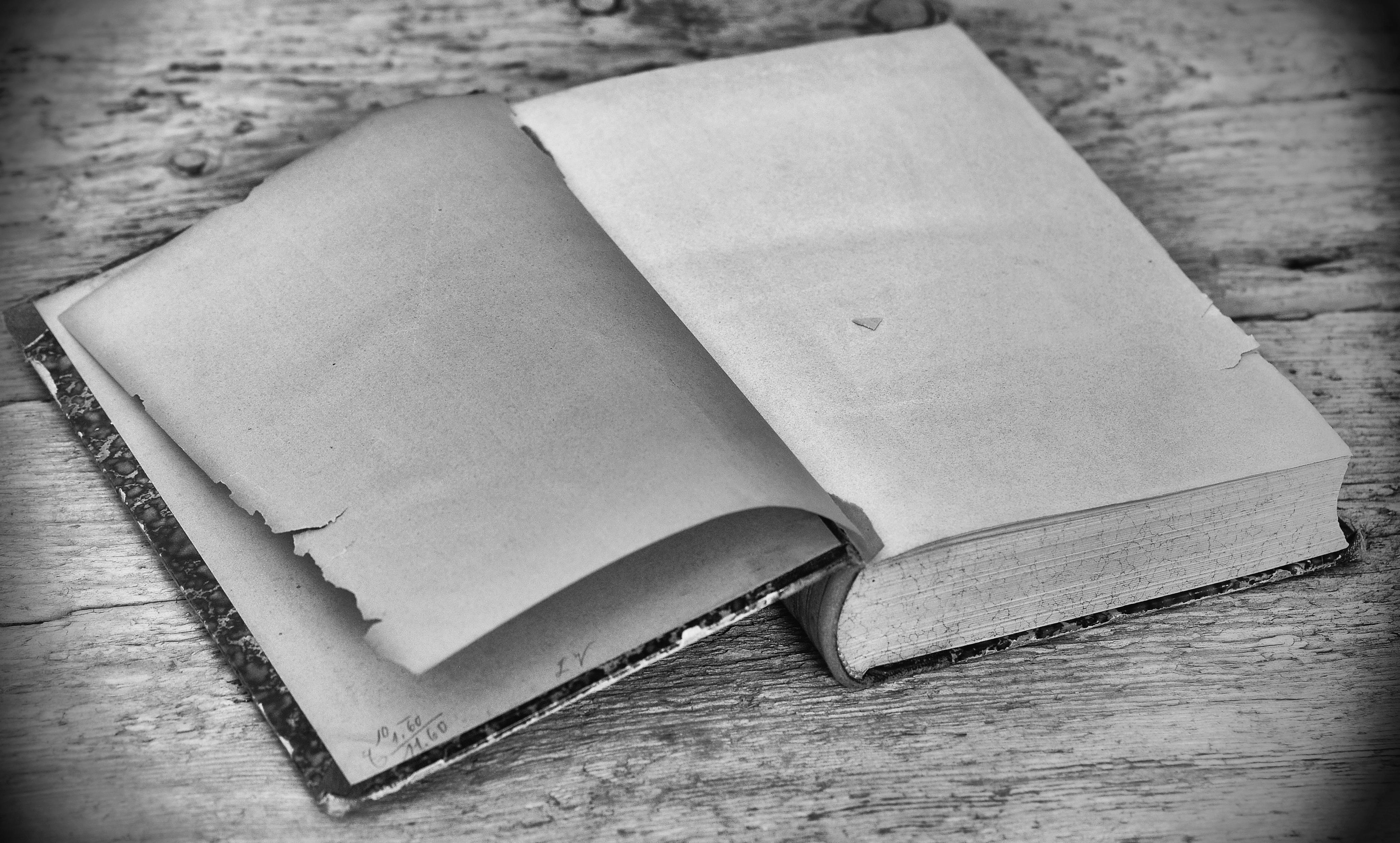 Images Gratuites Noir Et Blanc La Photographie Antique