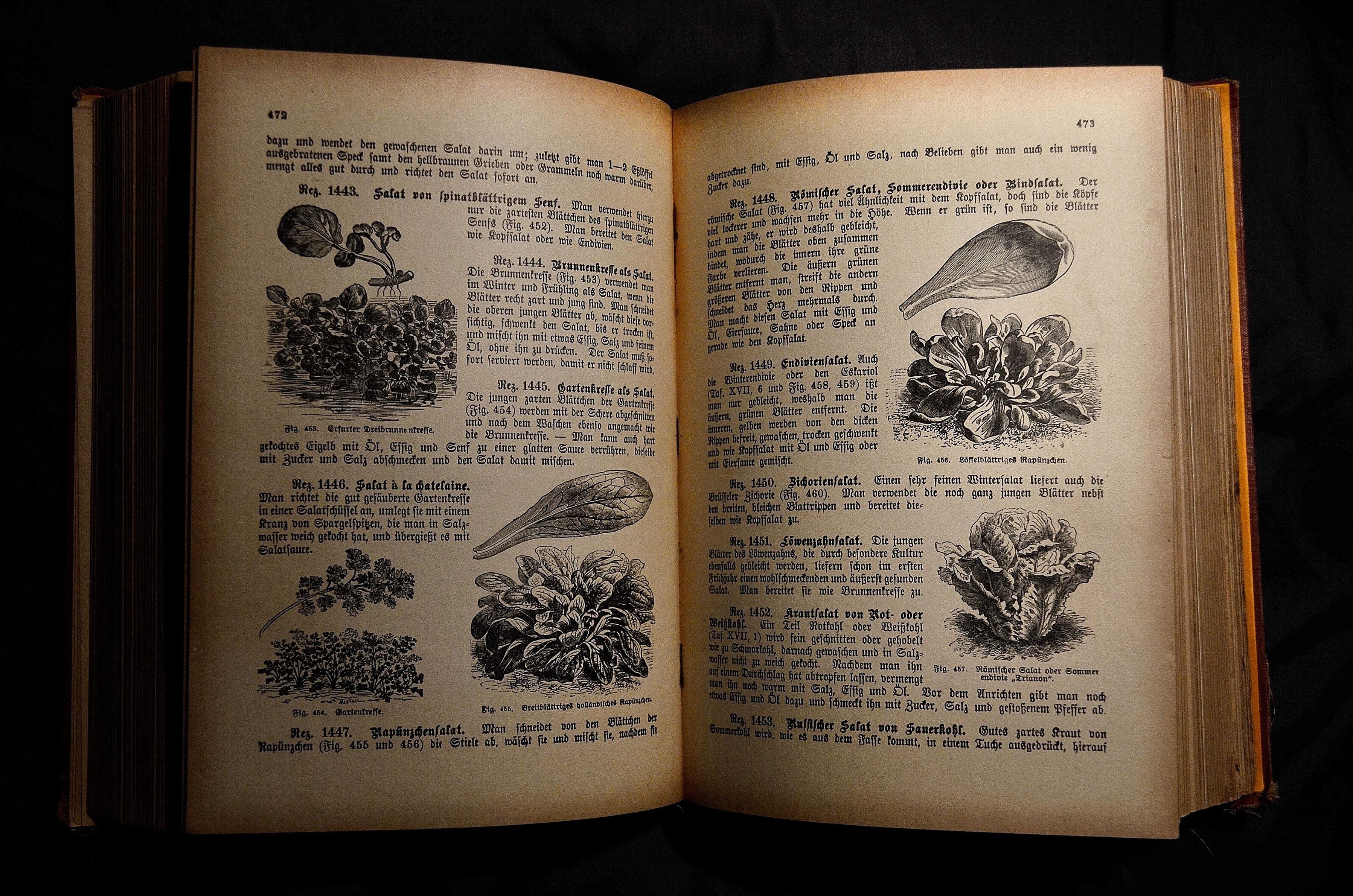 Images gratuites marque conception texte calligraphie for Anciens livres de cuisine
