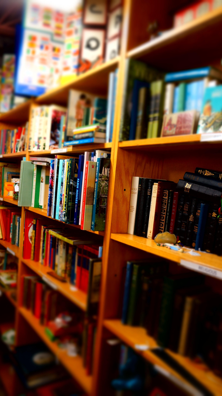 Fotos Gratis Libro Edificio Leyendo Color Educaci N  ~ Estanterias Para Libros Infantiles